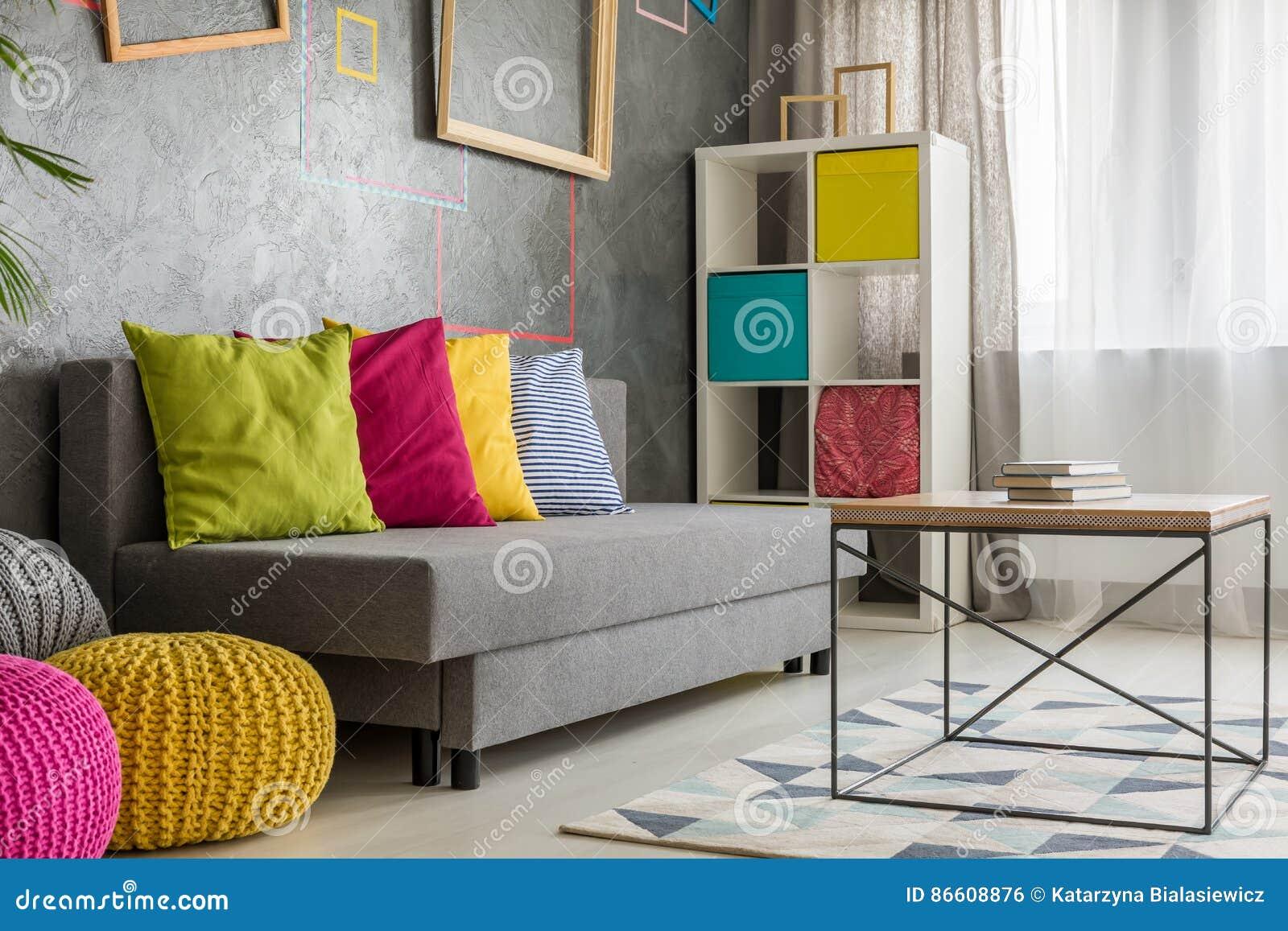 Divan gris avec le coussin coloré