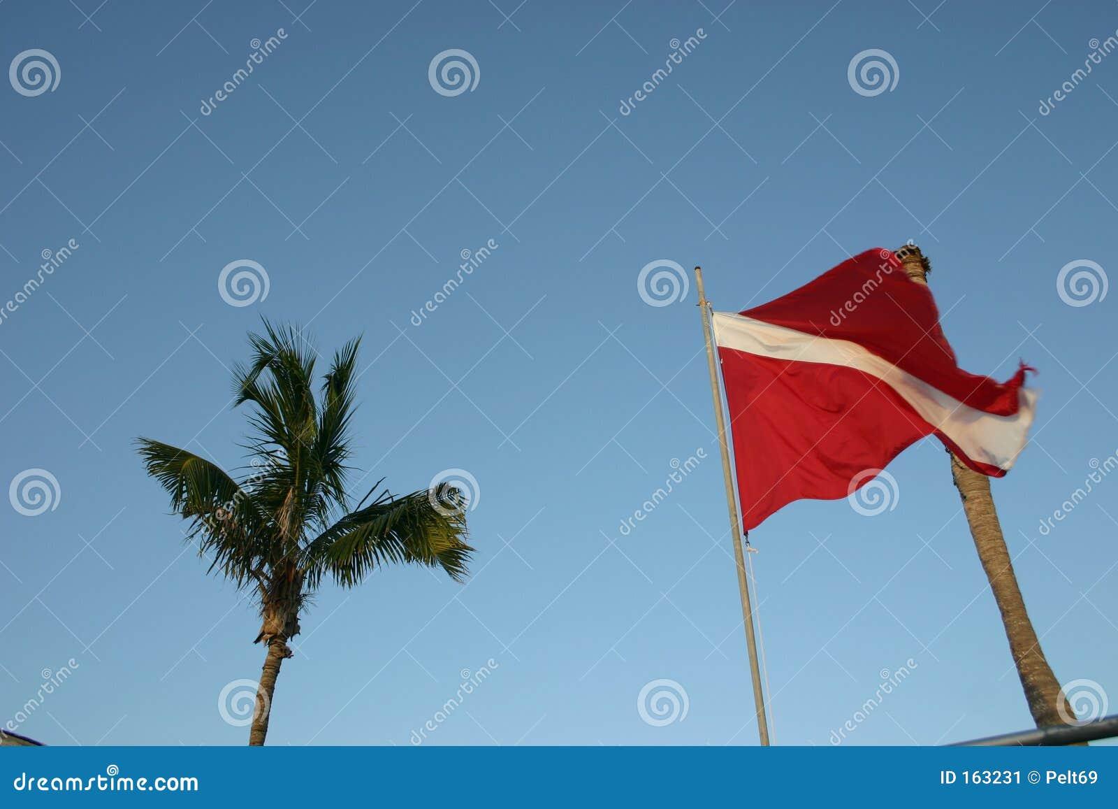 Dive flag
