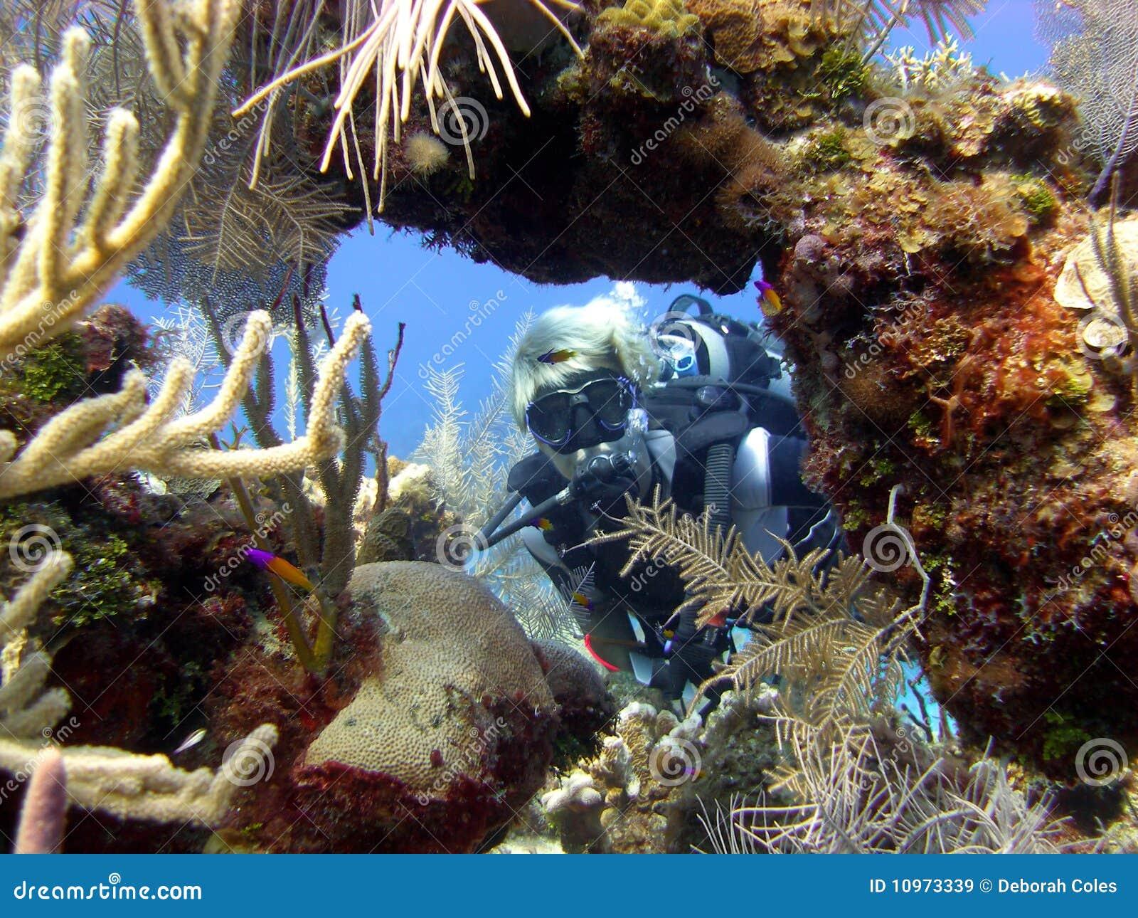 Diver enjoys a sunny dive