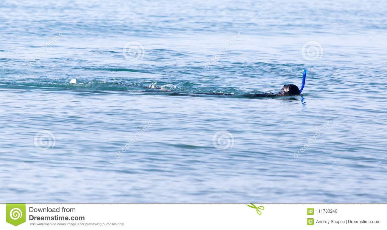 Diver on the lake