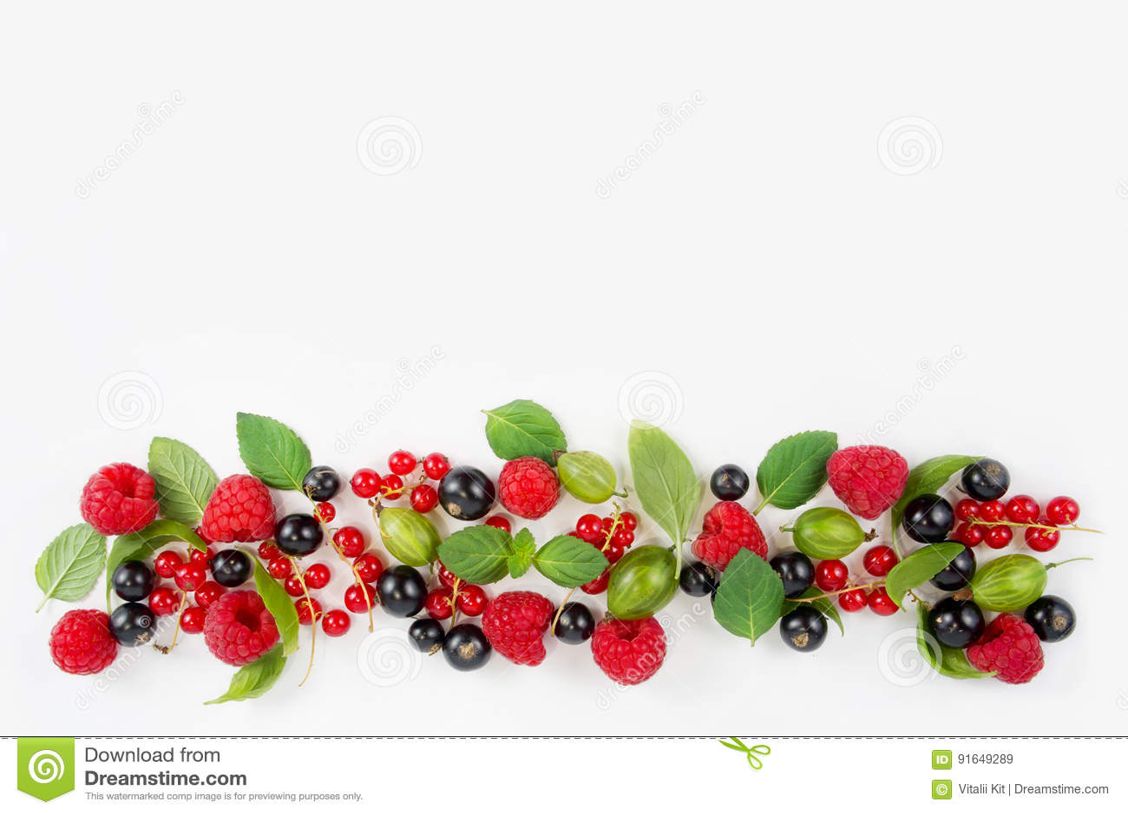 Diversas bayas frescas del verano Frambuesas, pasas, grosellas espinosas, menta y hojas maduras de la albahaca