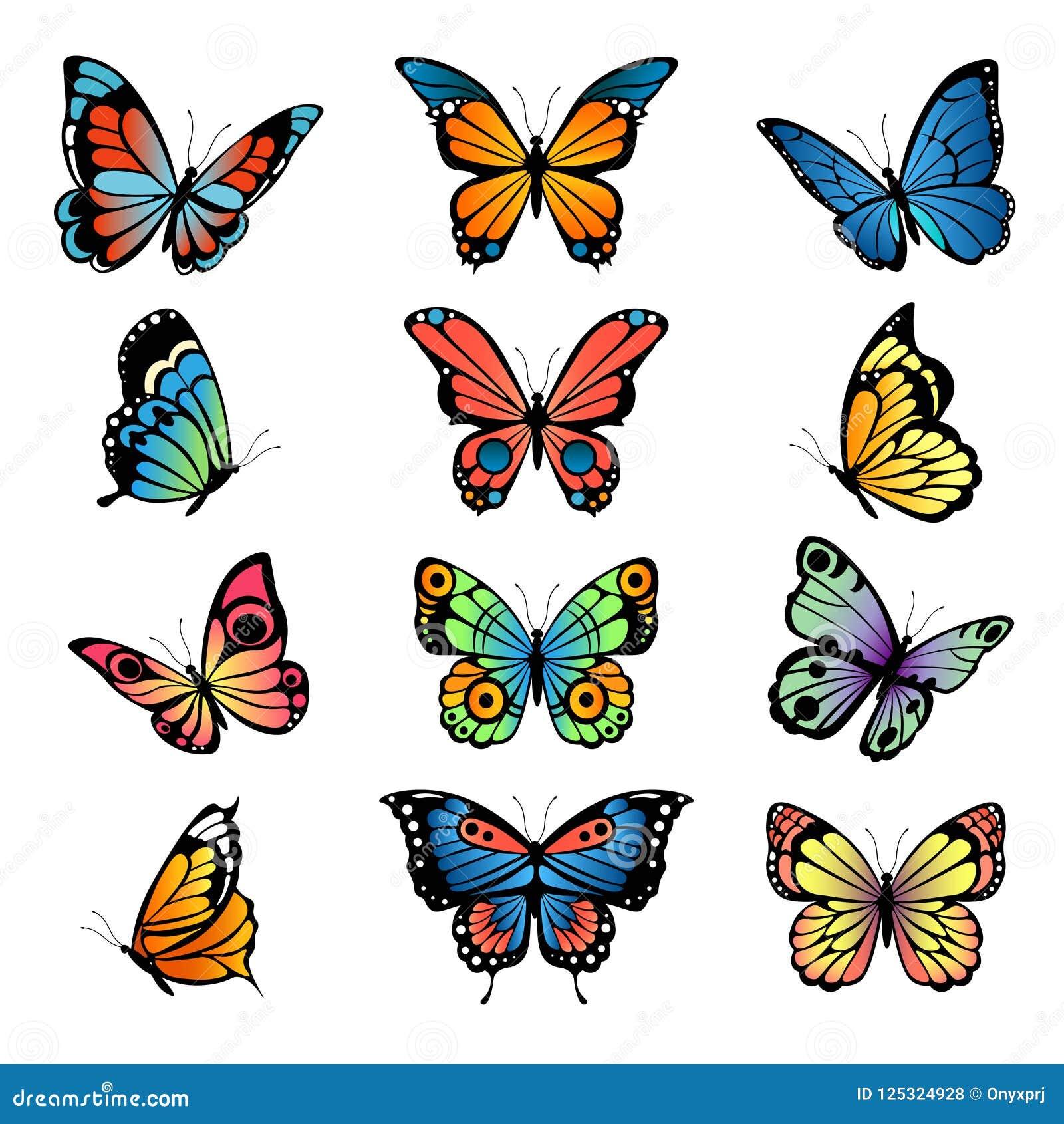 Diverse beeldverhaalvlinders Vastgestelde vectorillustraties van vlinders