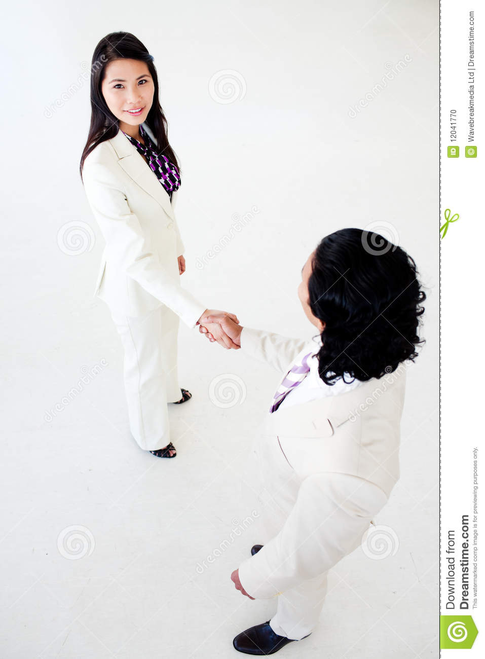 A Diverse Business People Greeting Each Other Stock Photo 12041770