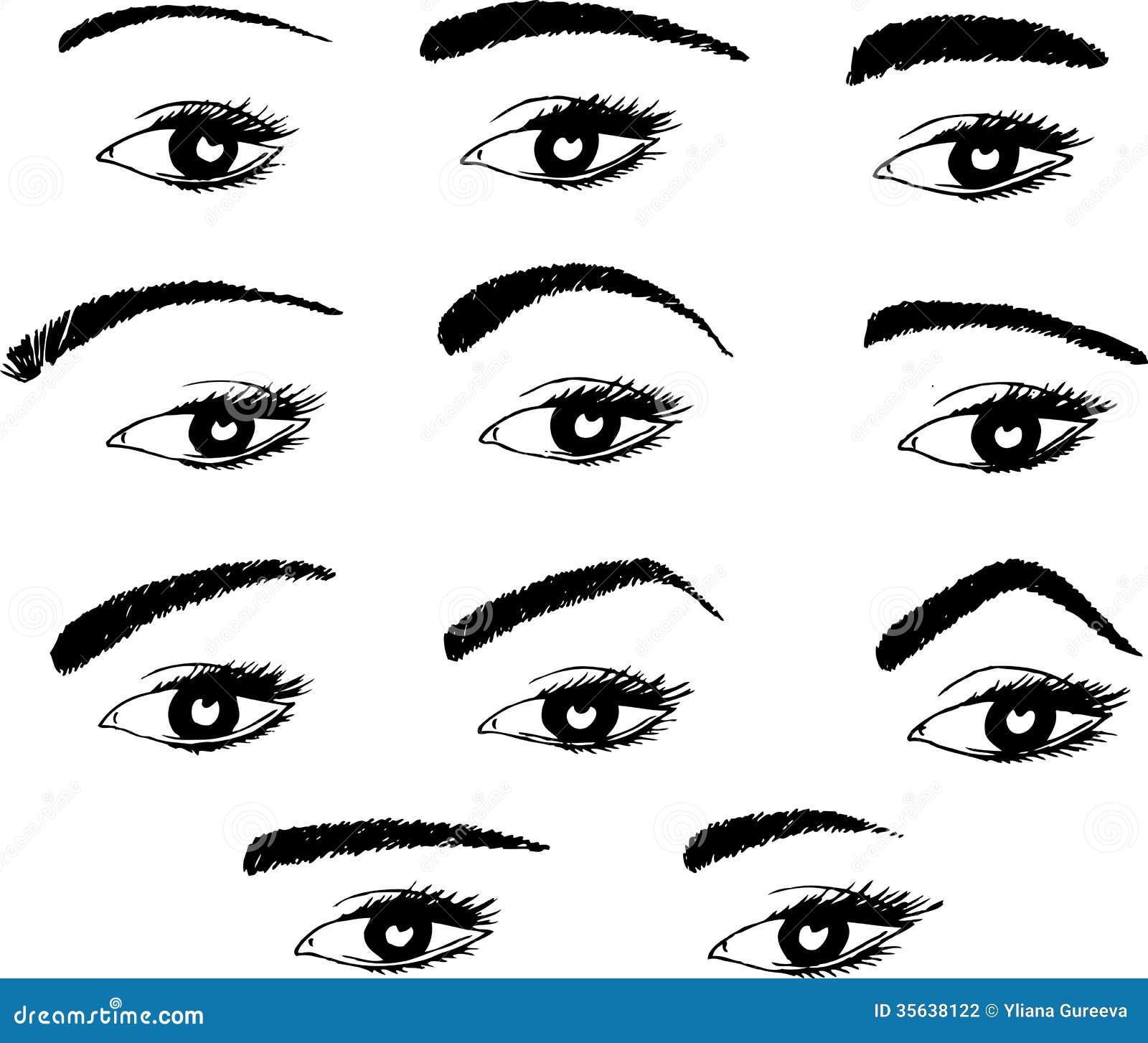 Diverses formes des sourcils