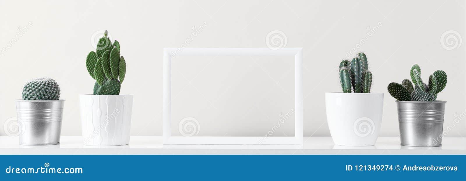 Diverses usines de maison de cactus dans différents pots contre le mur blanc Bannière de maquette avec le cadre de tableau blanc