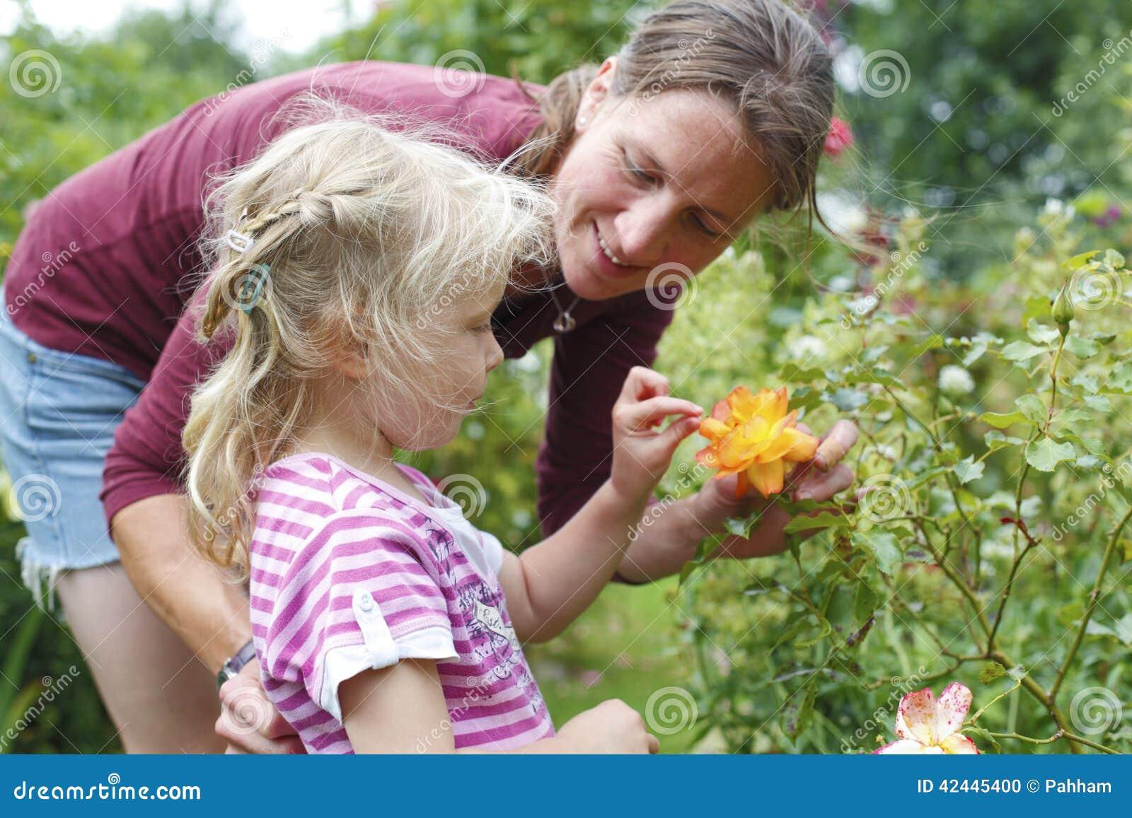 Diversión del jardín