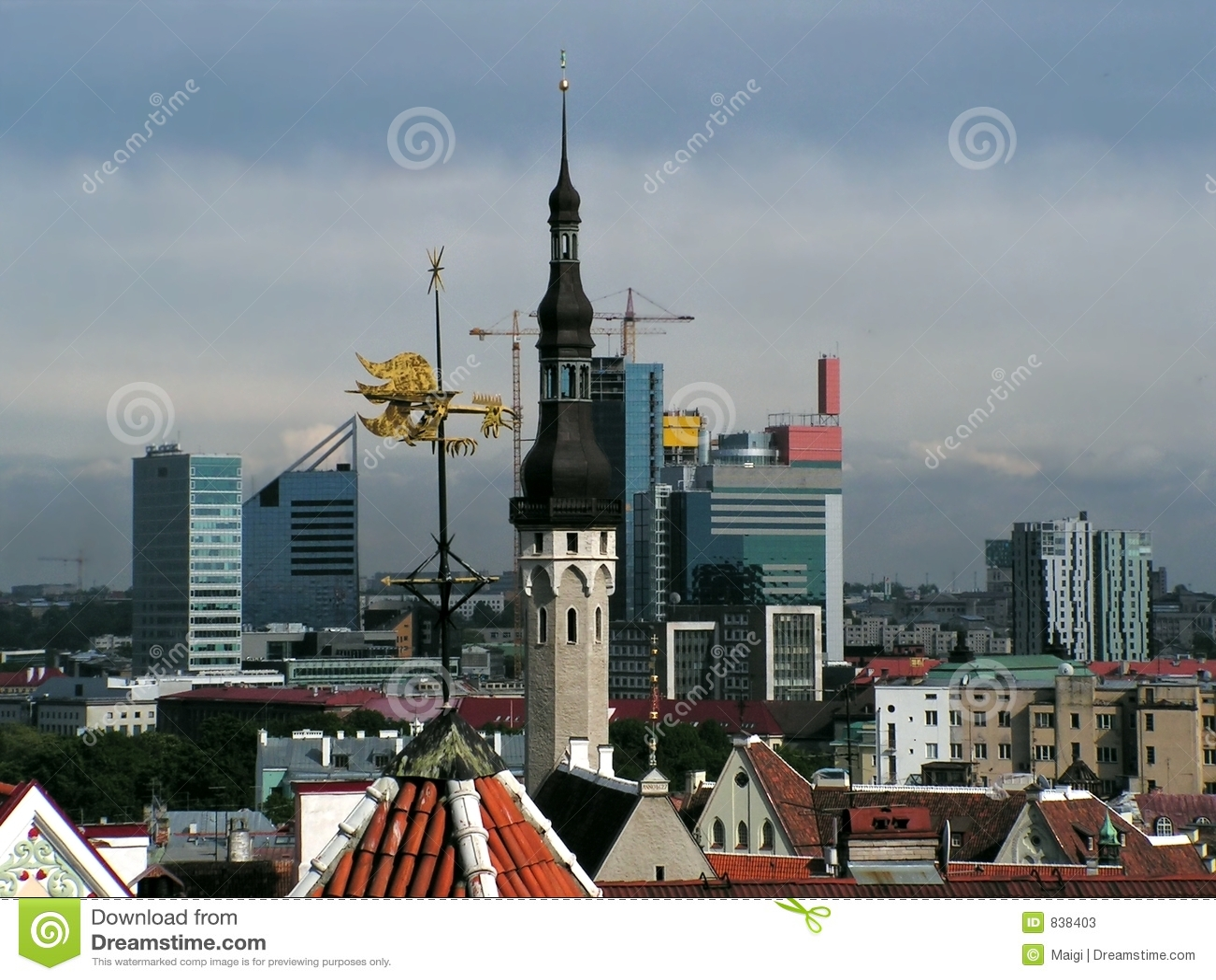 Diversity of Tallinn