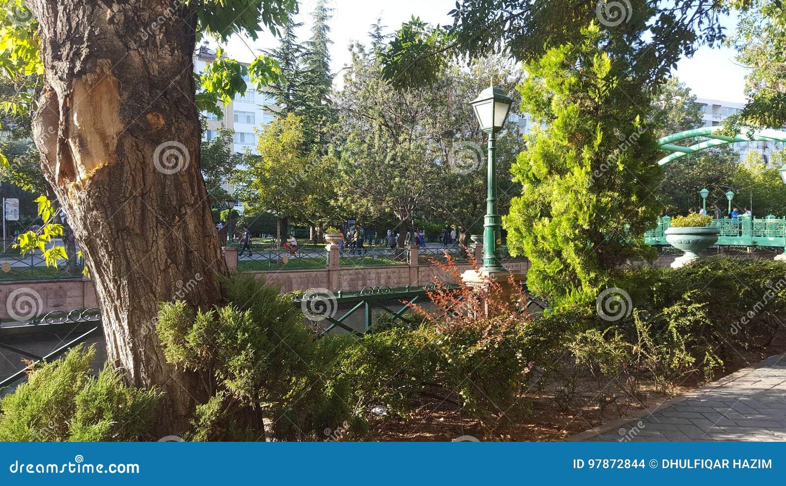 Diverso ángulo del parque