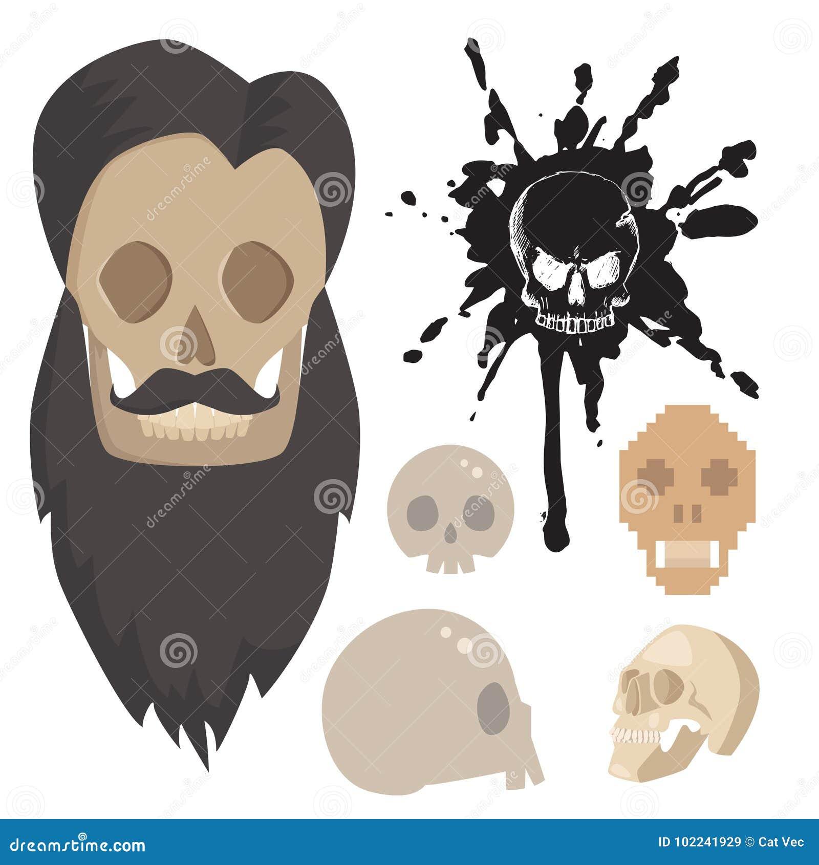 Diversos Cráneos Del Estilo Hacen Frente A Arte De La Anatomía Del ...