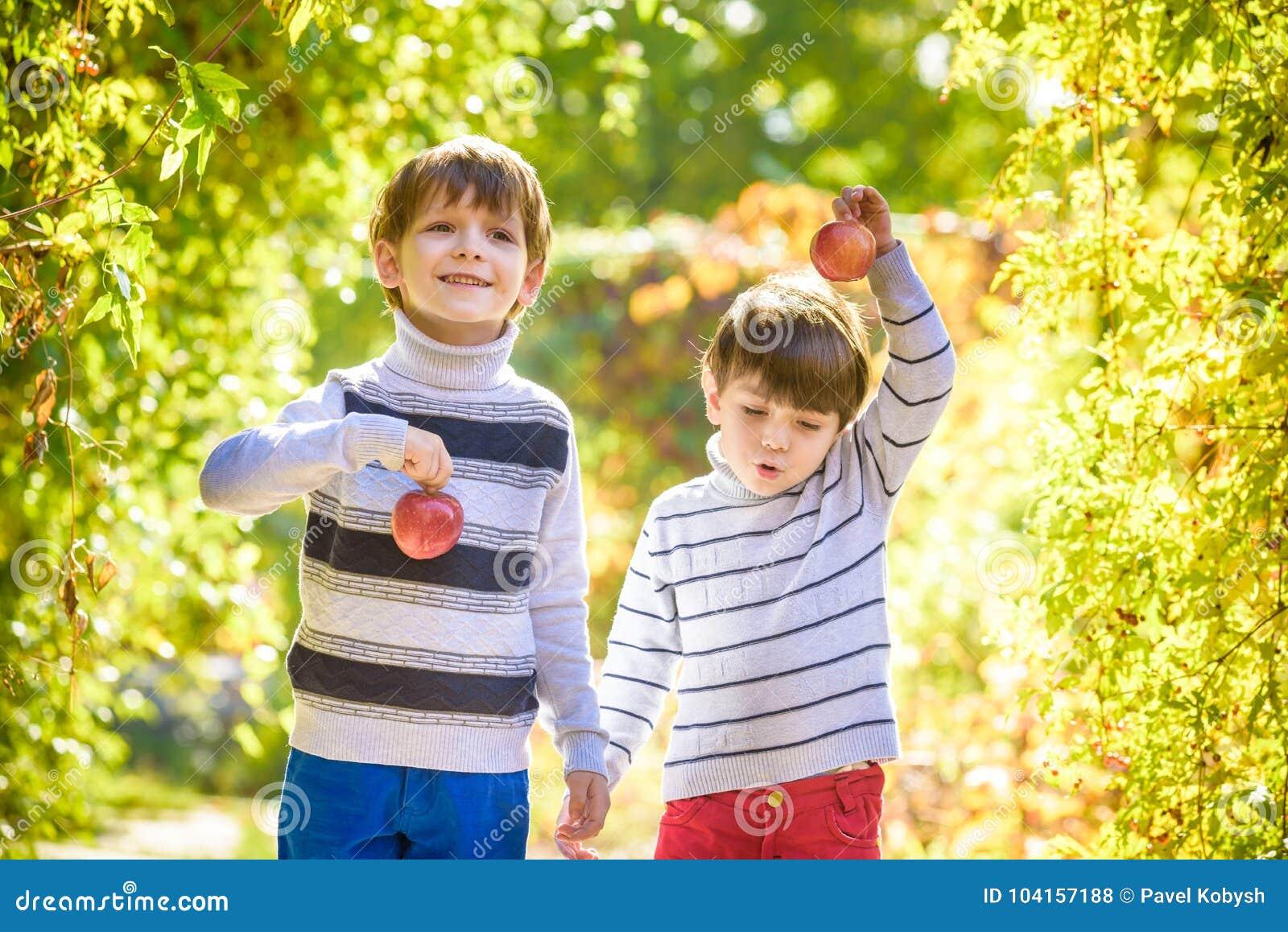 Divertimento da família durante o tempo de colheita em uma exploração agrícola Crianças que jogam no outono