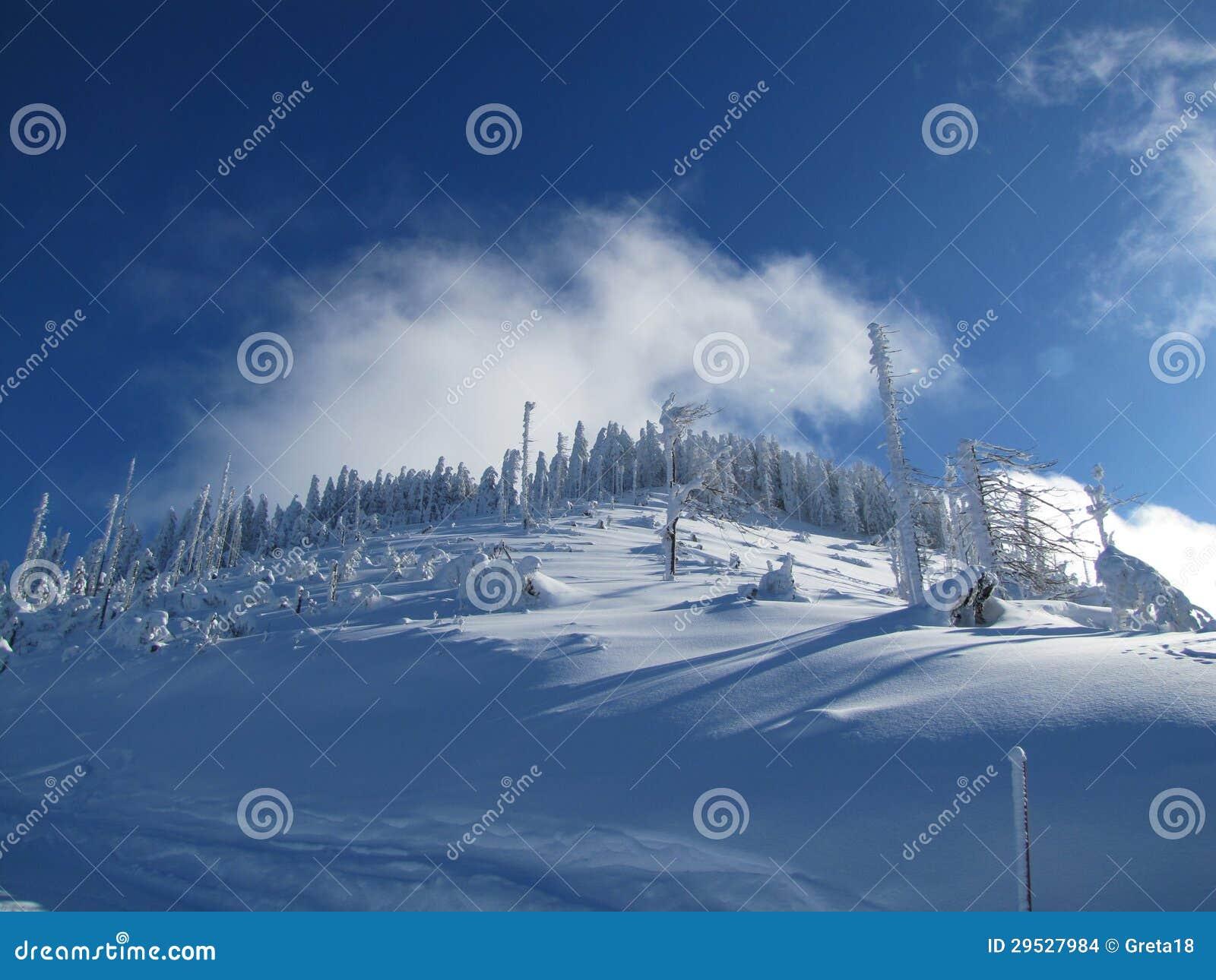 Divertimento do esqui em cumes do francês das montanhas