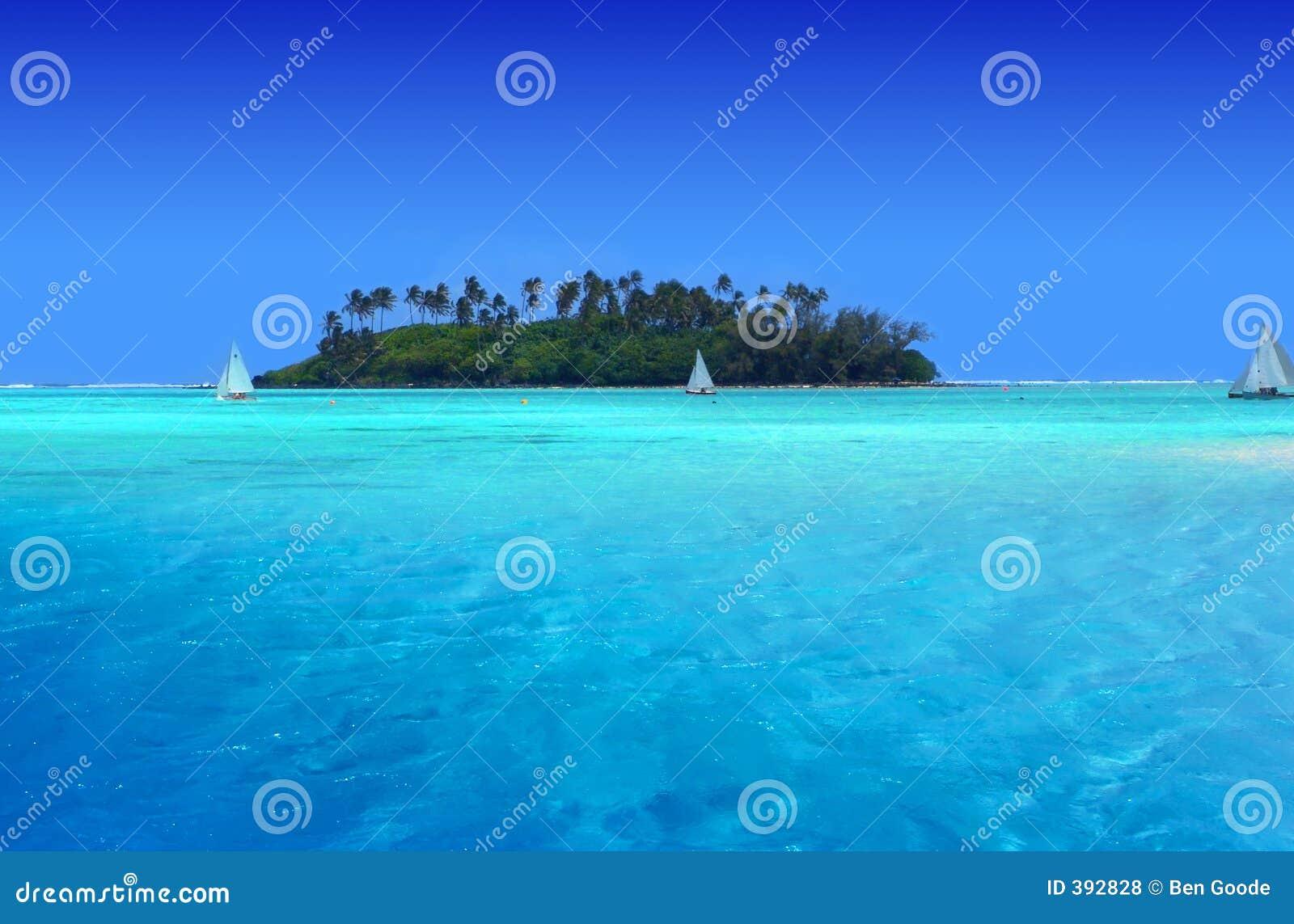 Divertimento tropicale