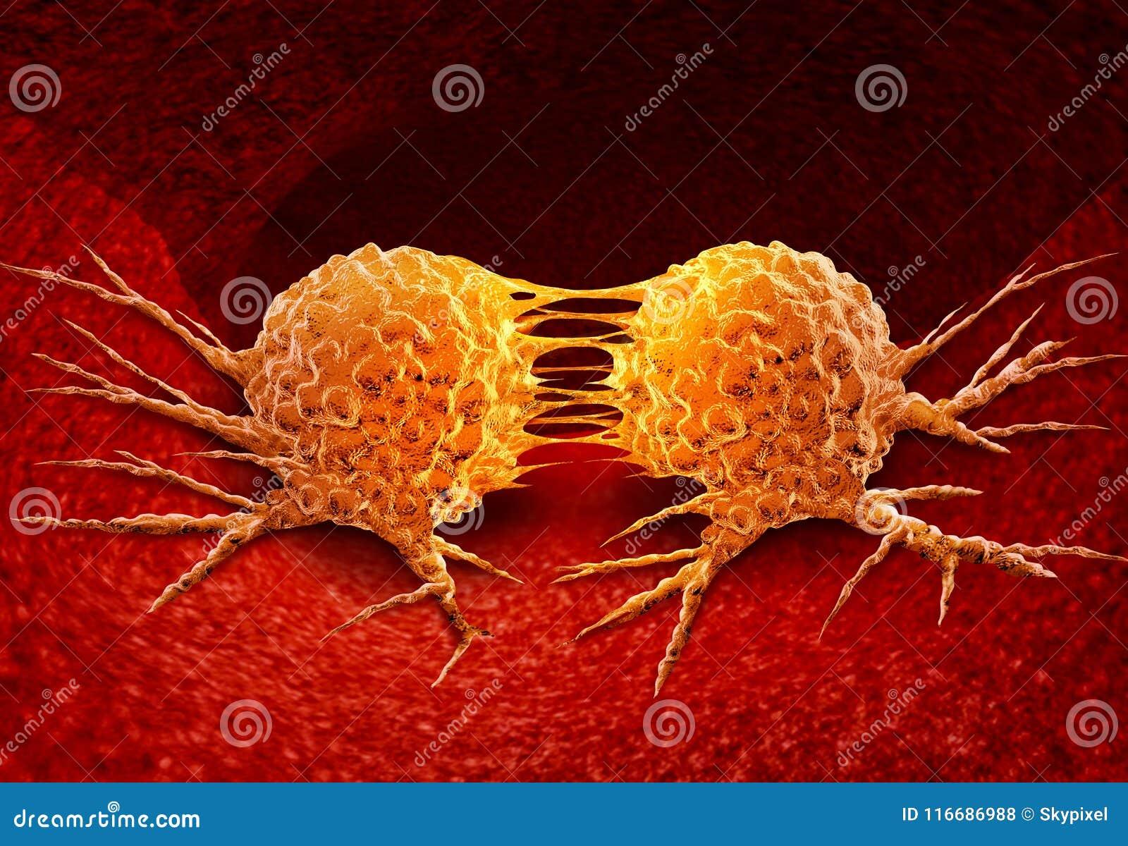 Dividing Cancer Cell stock illustration. Illustration of anatomy ...