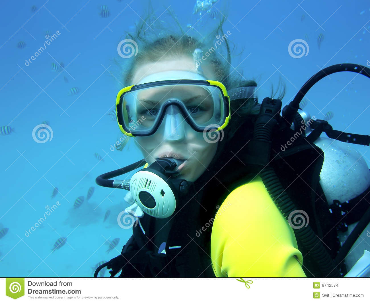 Diving Girl Stock Images Image 6742574