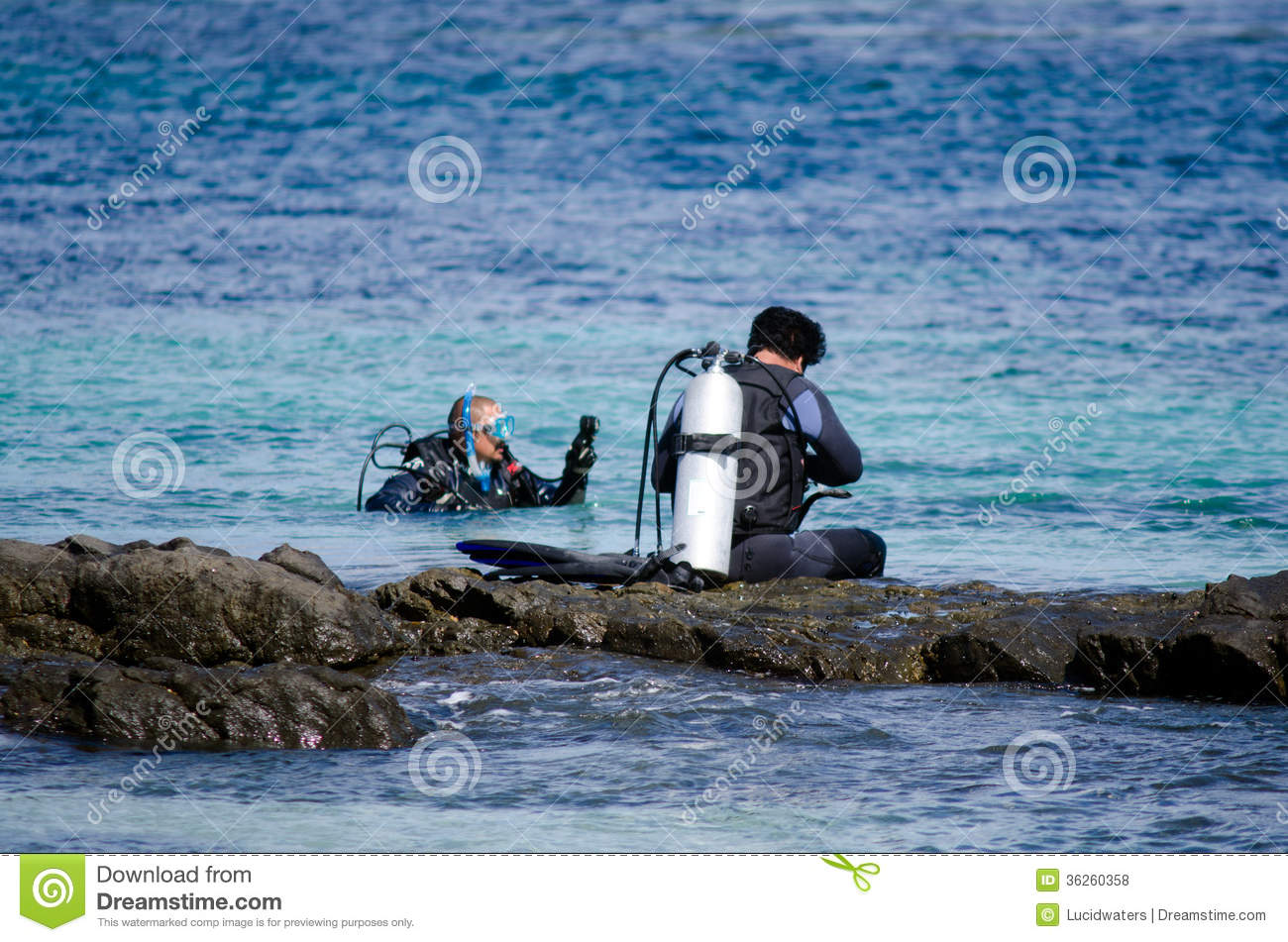 Karikari Peninsula New Zealand  city photos : Diving In Karikari Peninsula New Zealand Editorial Stock Photo Image ...