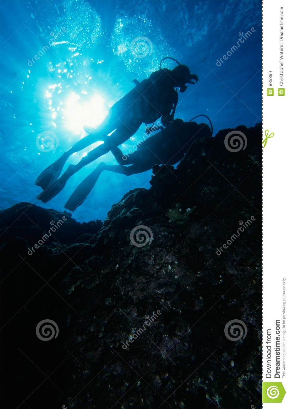 Diving the reef