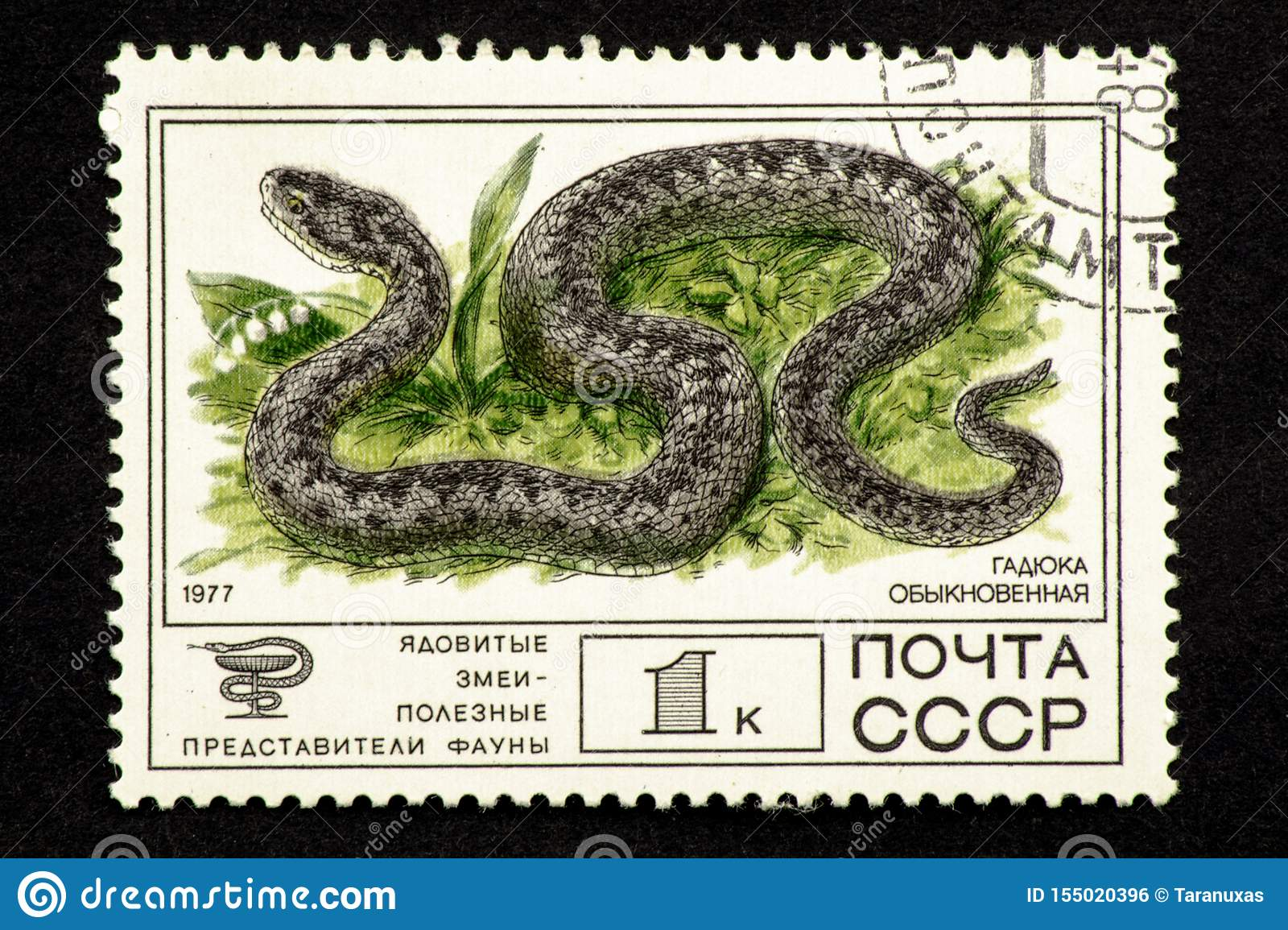 07.24.2019 Divnoe, Stavropol Territory, Russia. USSR postage stamp 1977. Series - Poisonous snakes are useful representatives of a