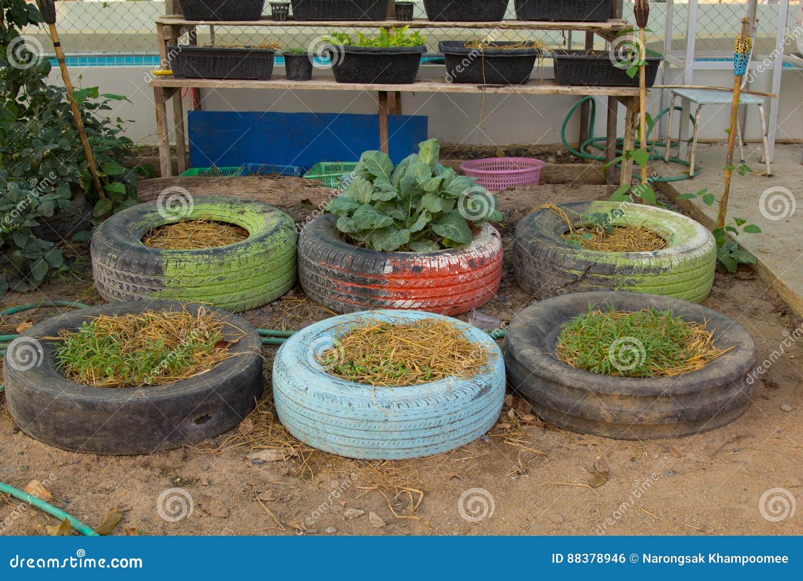 DIY-idee die van band te recycleren met bloemen of installatie in oud rubber wordt gebruikt