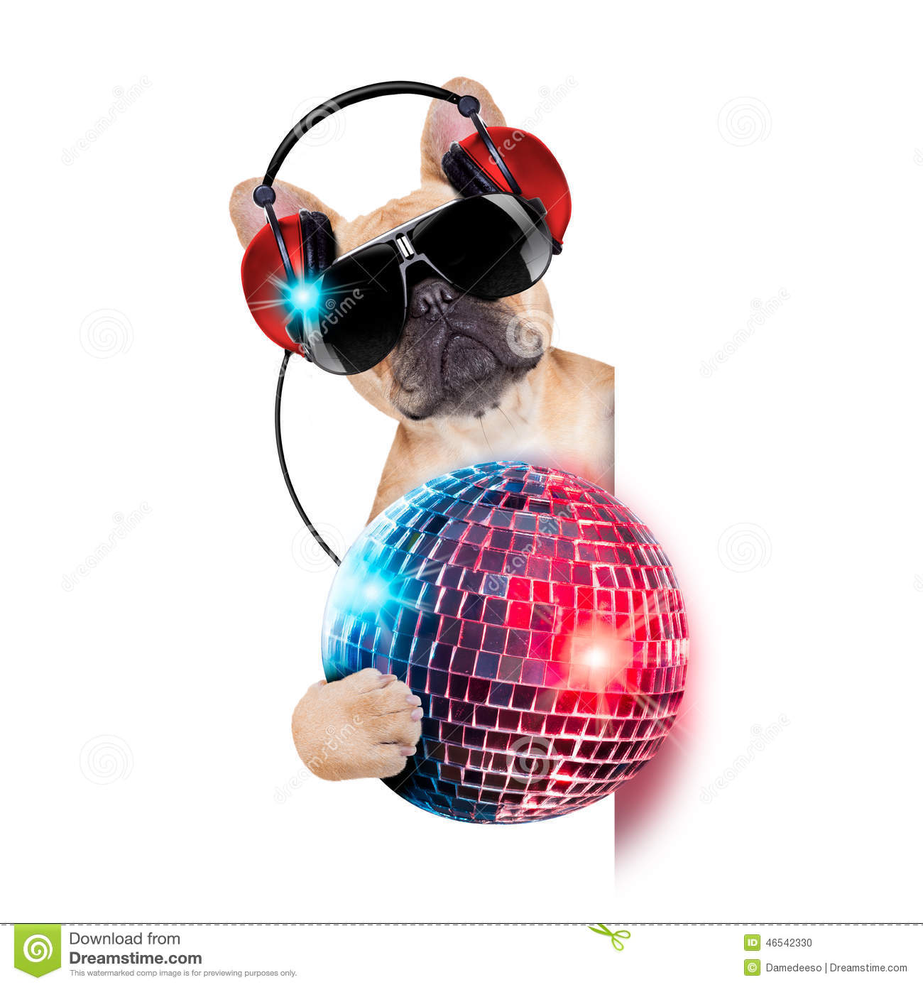 Dj bulldog dog with headphones listening to music holding a disco ball ...