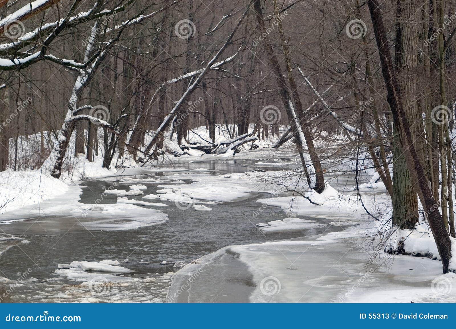 Djupfryst flod