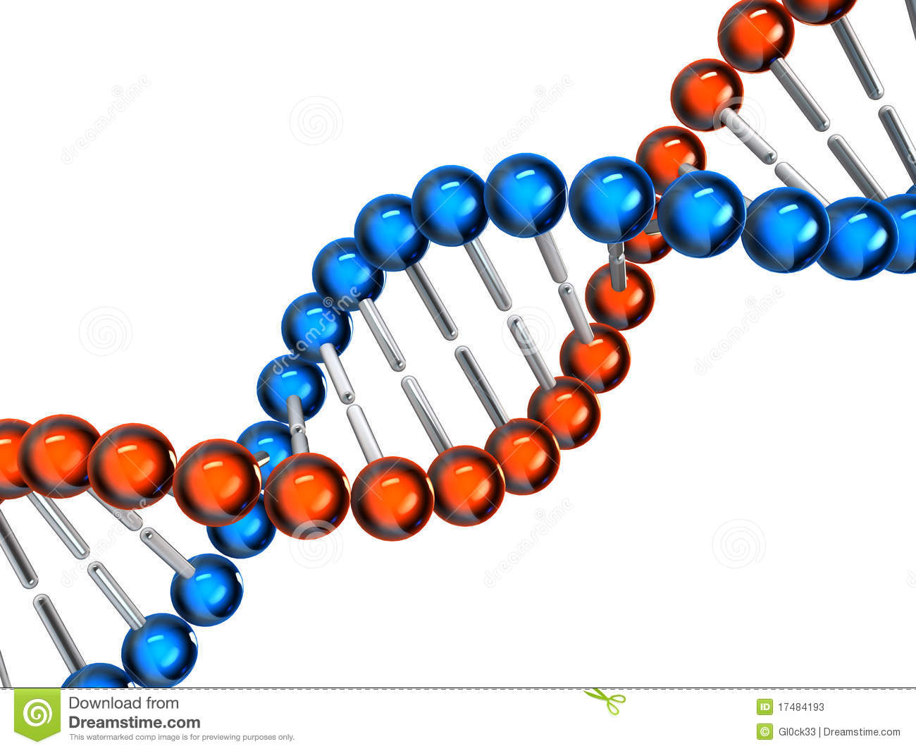 3d model of dna on white background.