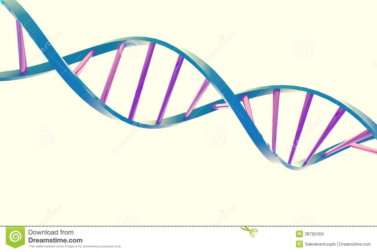 how to draw dna double helix
