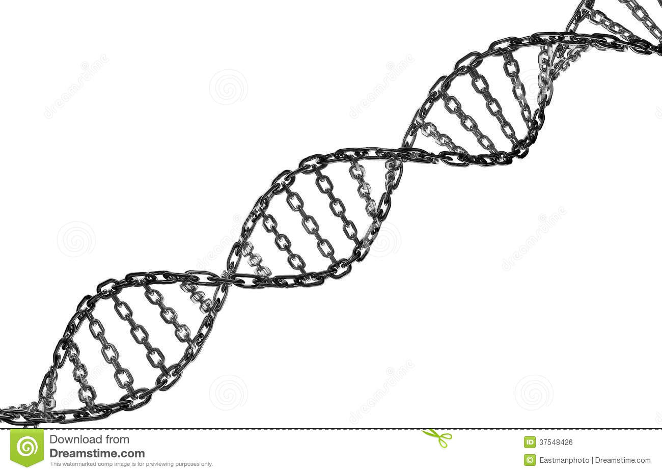 dna-helix-metal-chain-link-37548426.jpg