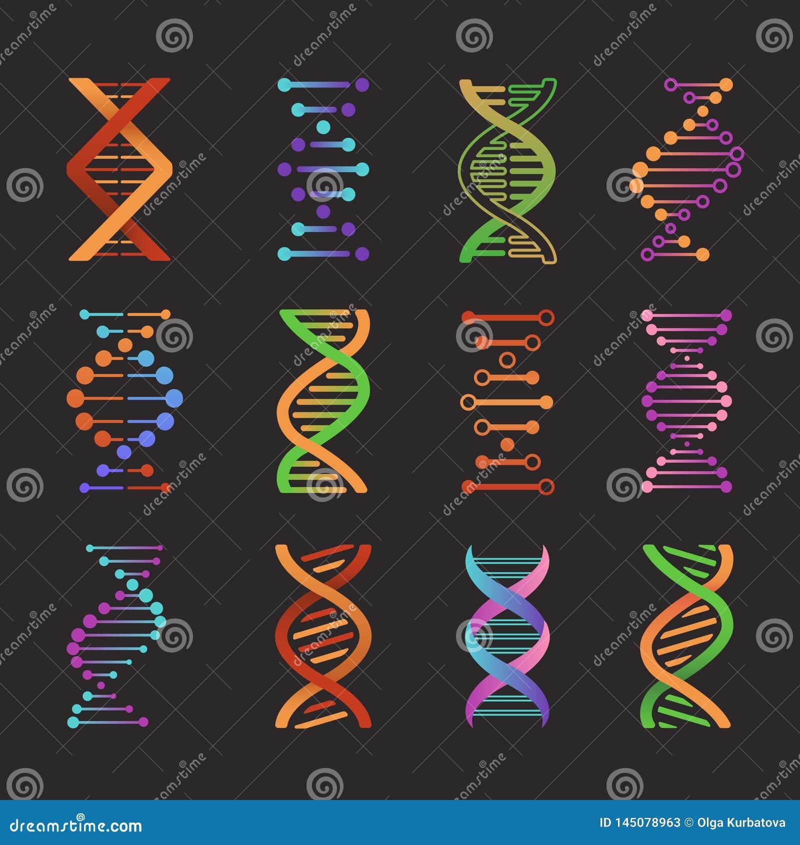 DNA-Ikonen Biochemieuntersuchungslabordoppelhelixsymbole, vorbildliche Piktogramme des Gens Molek?lvektor des genetischen Codes