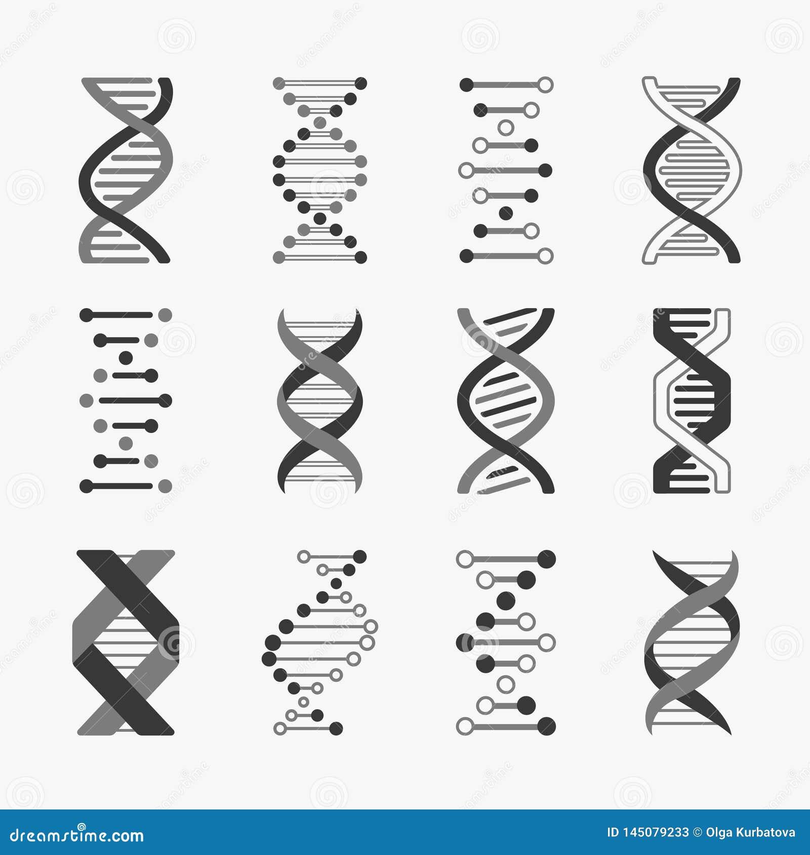 DNA Ingegneria genetica dei cromosomi di bioinformatica della struttura del gene delle cellule dell elica di biologia a spirale d