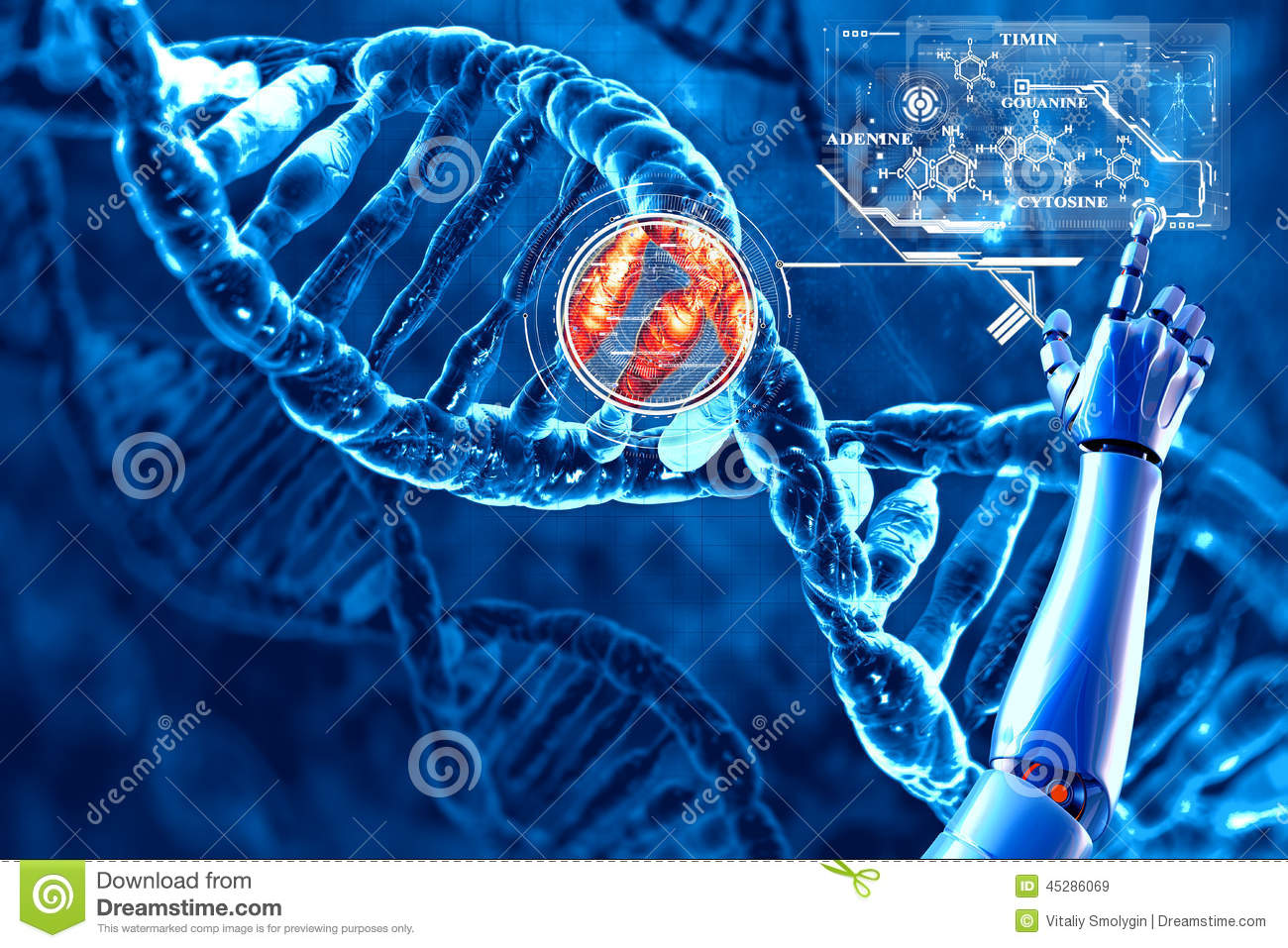 DNA and its chemical formula