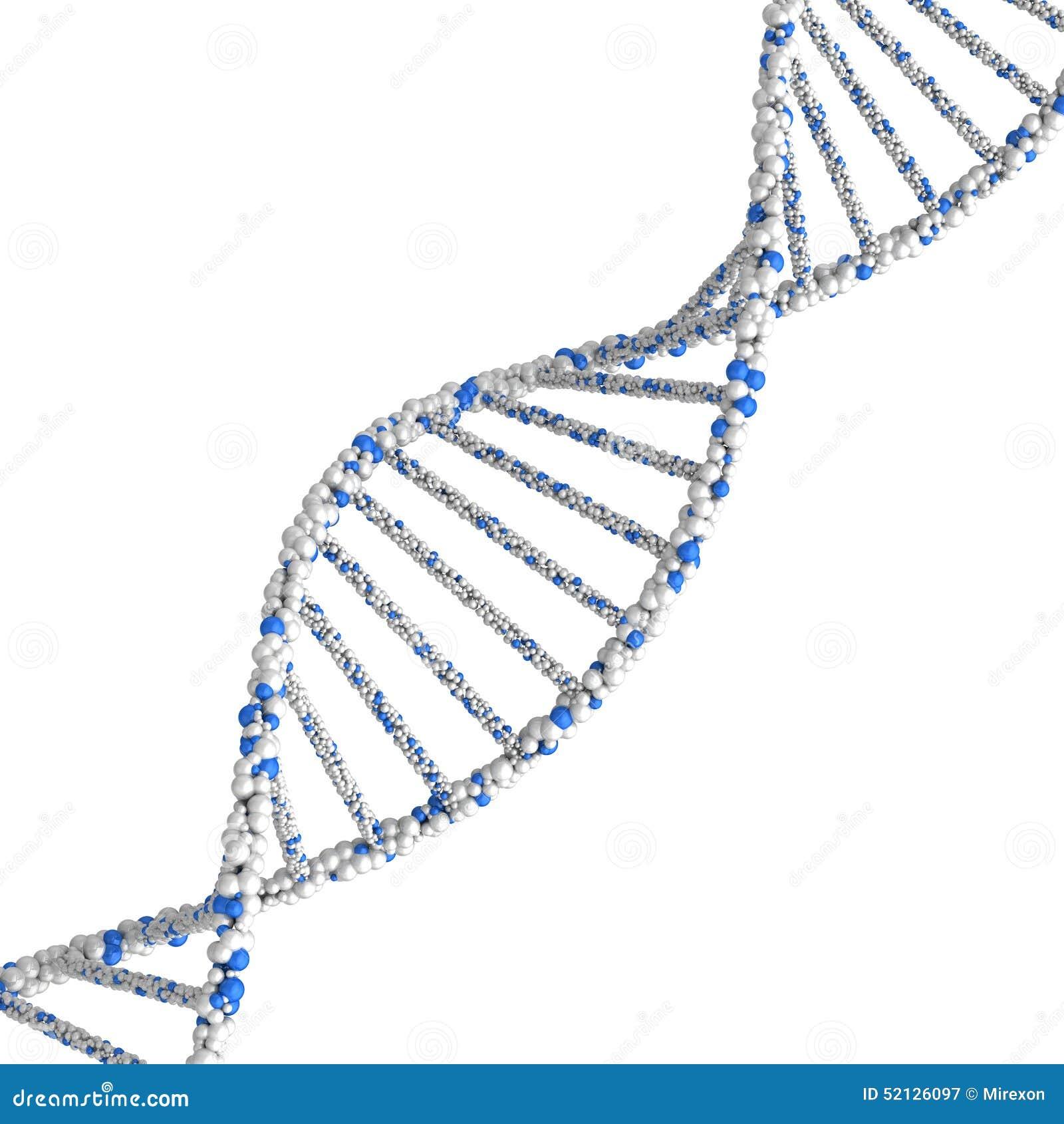 Dna Model Wallpaper: DNA Molecule. 3d Render On A White Background Stock