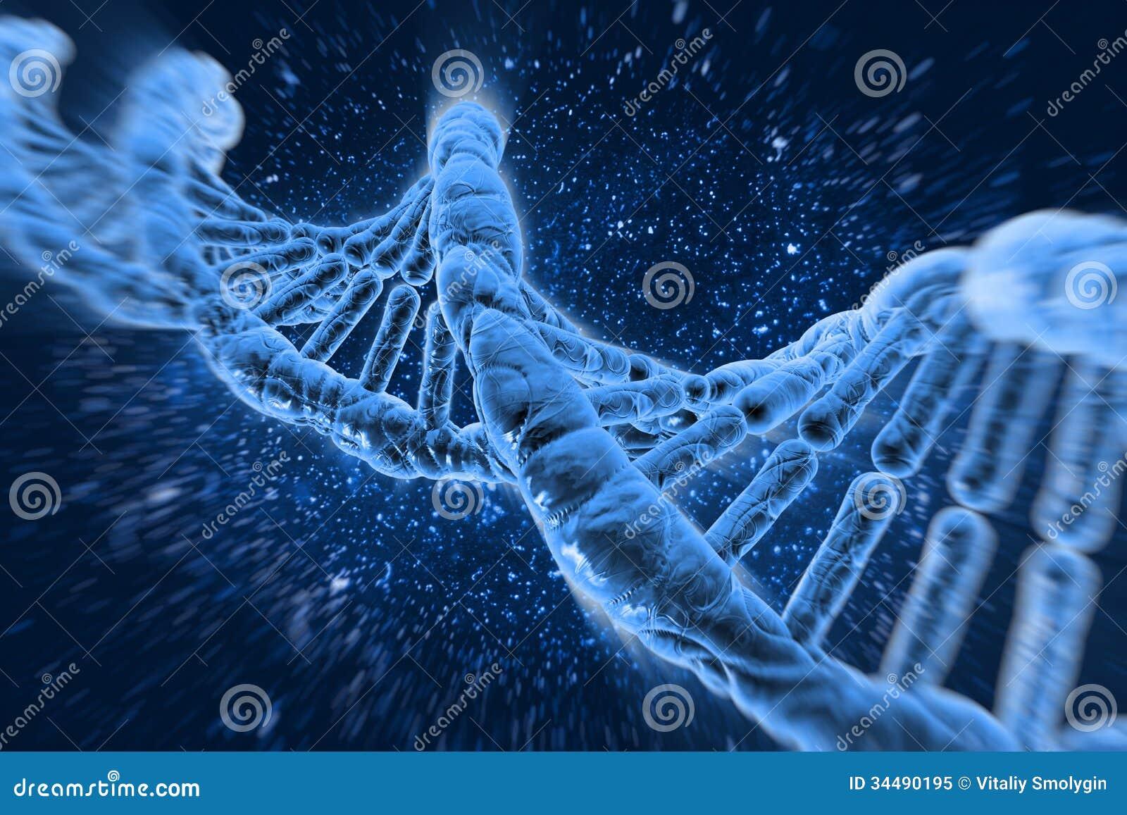 Dna molecules royalty free stock photo image 34490195