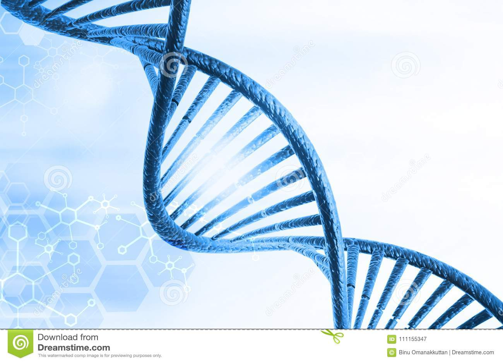DNA molekuły
