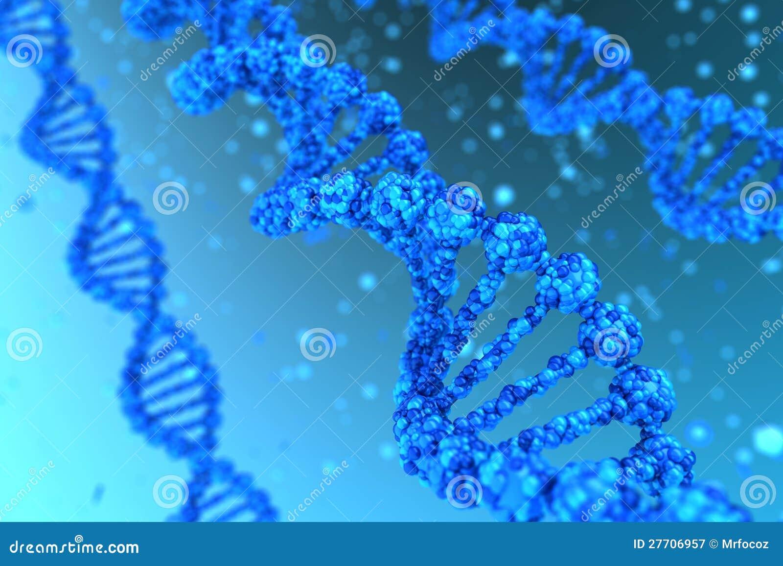 DNA-Schnecke