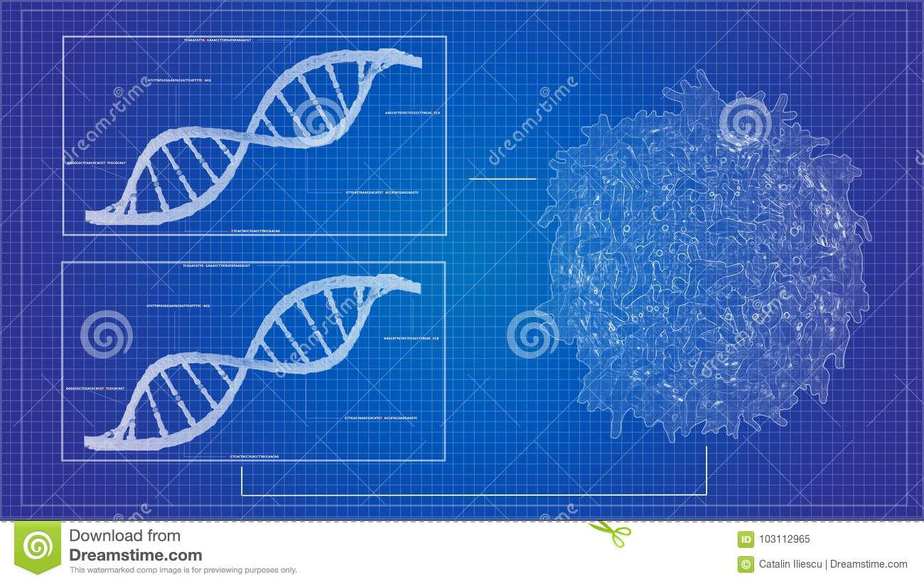 Dna sequencing blueprint rna sequencing dna computational models download comp malvernweather Choice Image