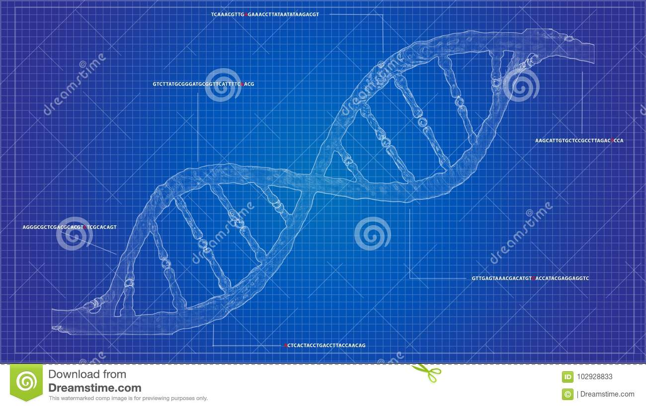 Dna sequencing blueprint rna sequencing dna computational models dna sequencing blueprint rna sequencing dna computational models malvernweather Choice Image