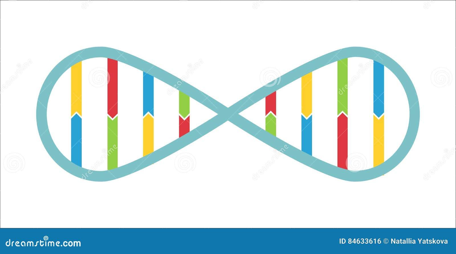 Dna spiral in infinity symbol stock vector illustration 84633616 dna spiral in infinity symbol buycottarizona