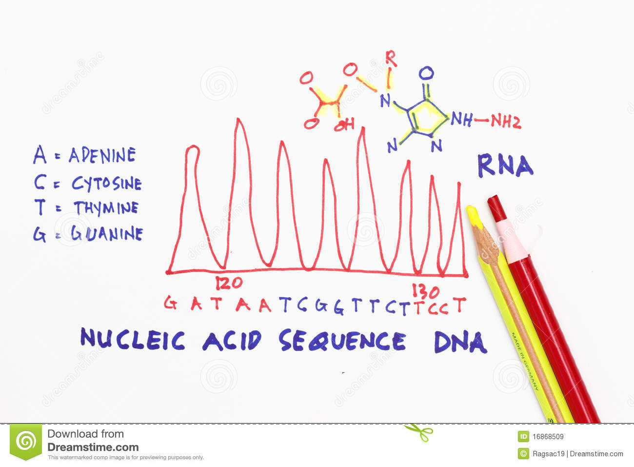 dna strand with sketch and diagram abstract