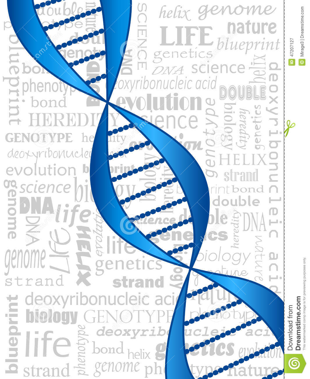 Dna strand stock vector illustration of genome blueprint 47207127 download comp malvernweather Choice Image