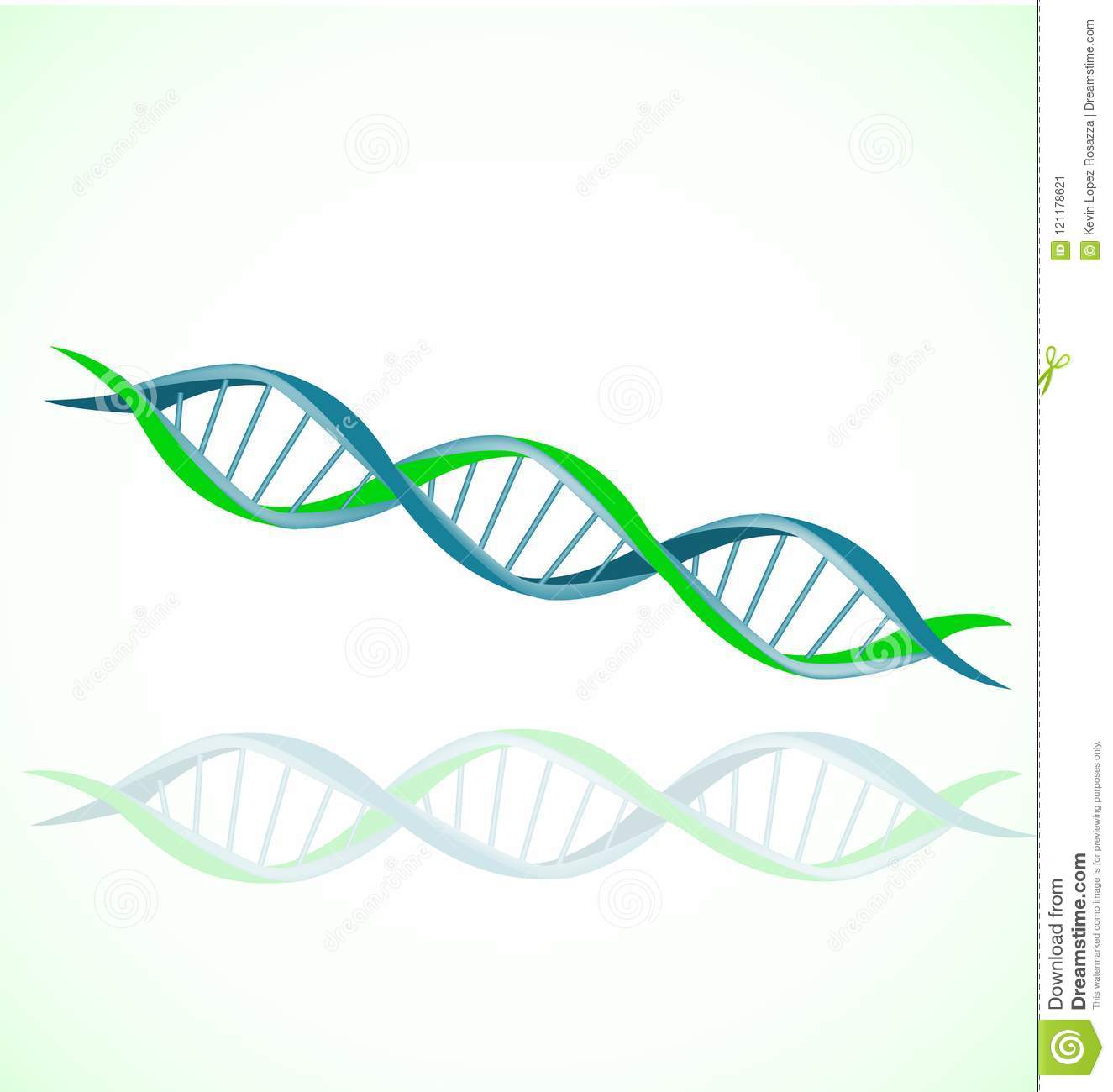 dna strand double helix spiral icon vector set stock vector