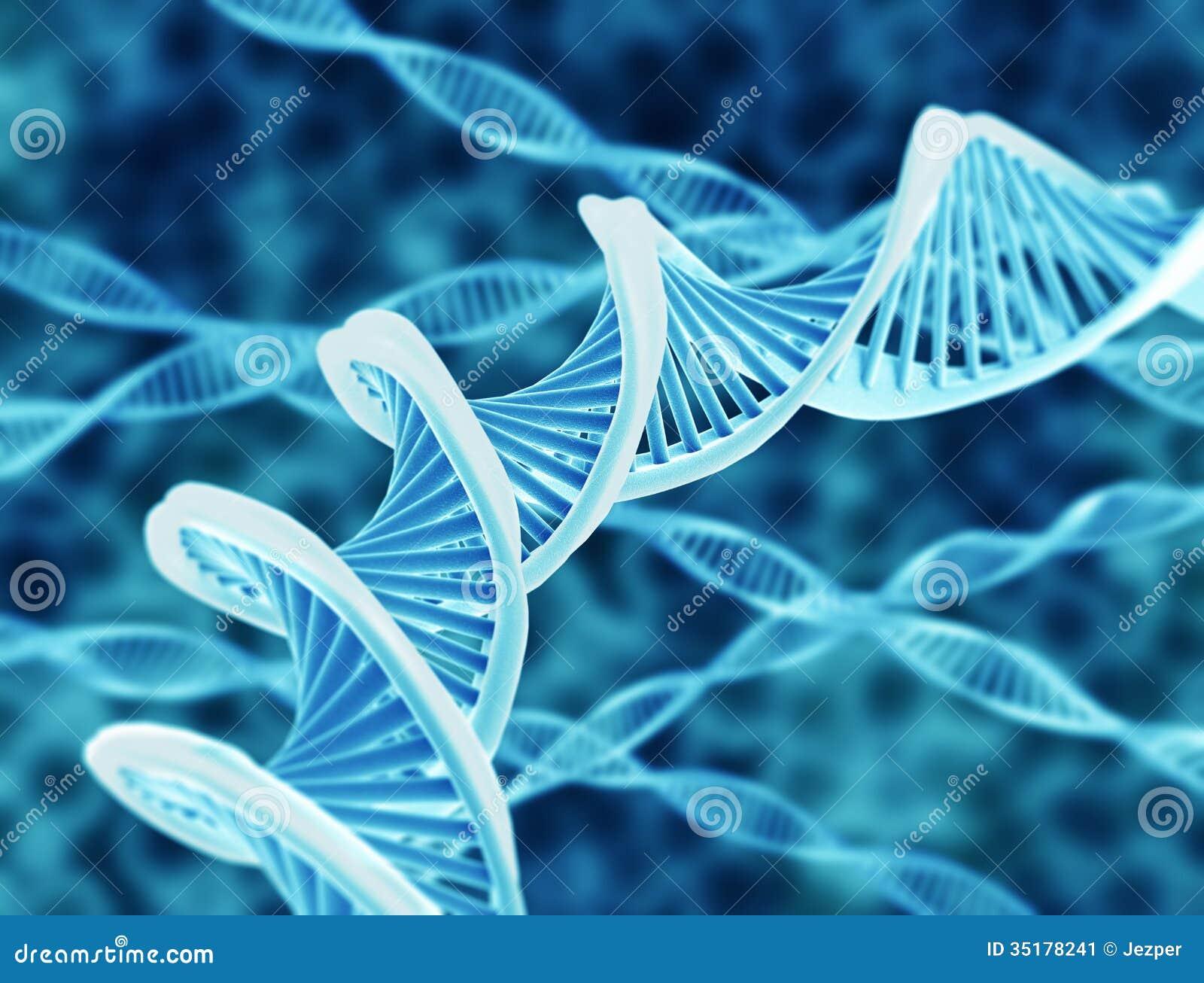 DNA sznurki
