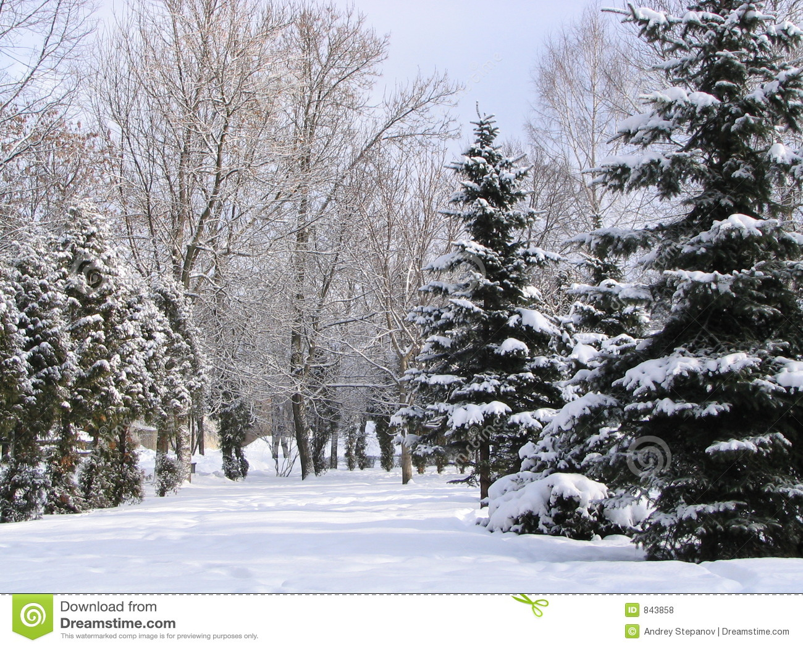 Dni 2 zimy.