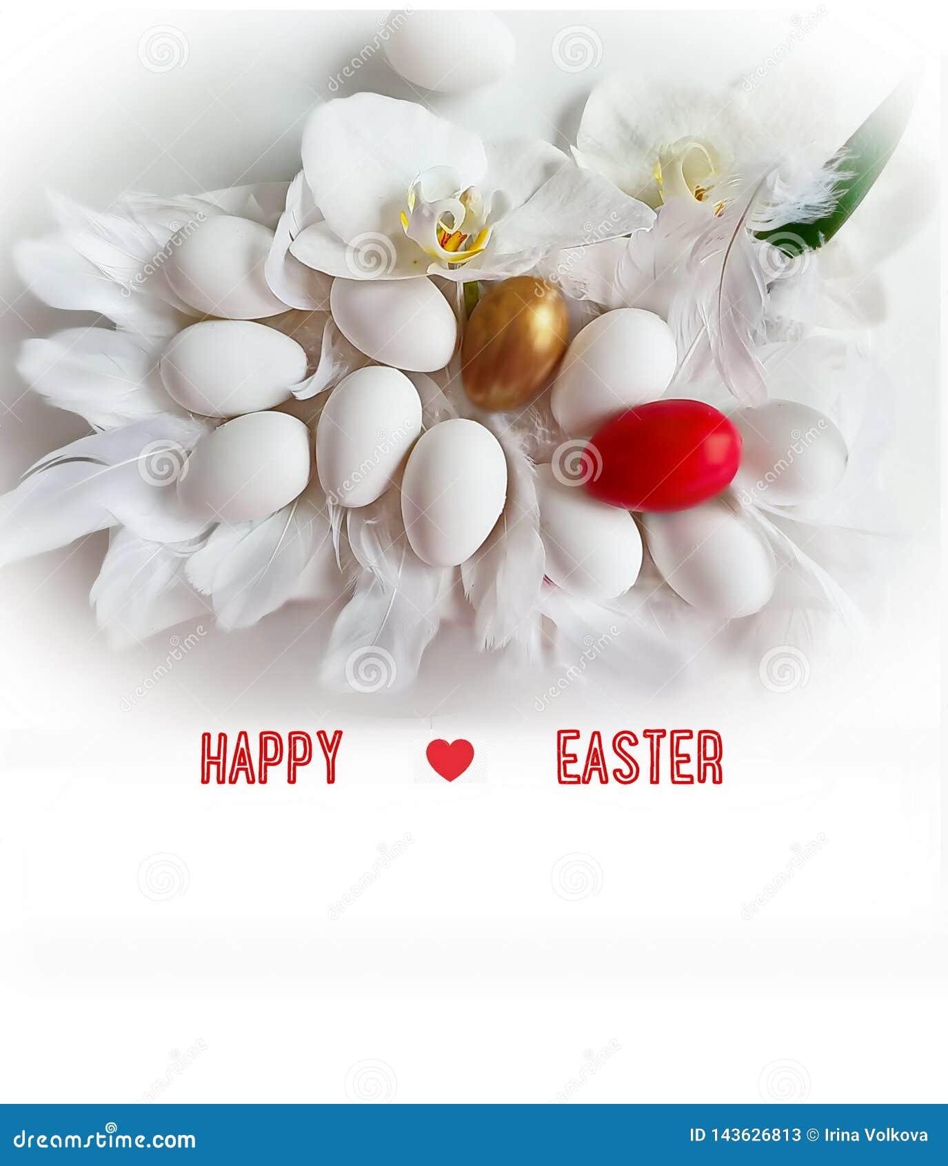 Do fundo feliz da Páscoa da orquídea dos ovos e das flores ilustração amarela vermelha do projeto do feriado do tema da Páscoa da