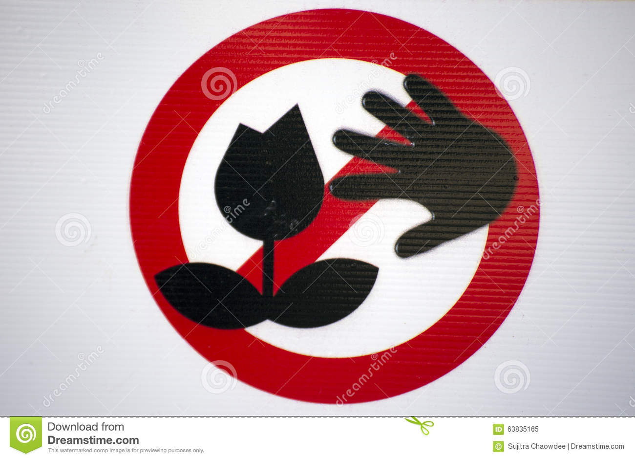 Do Not Pick The Flower Stock Image  Image Of Pick  Button