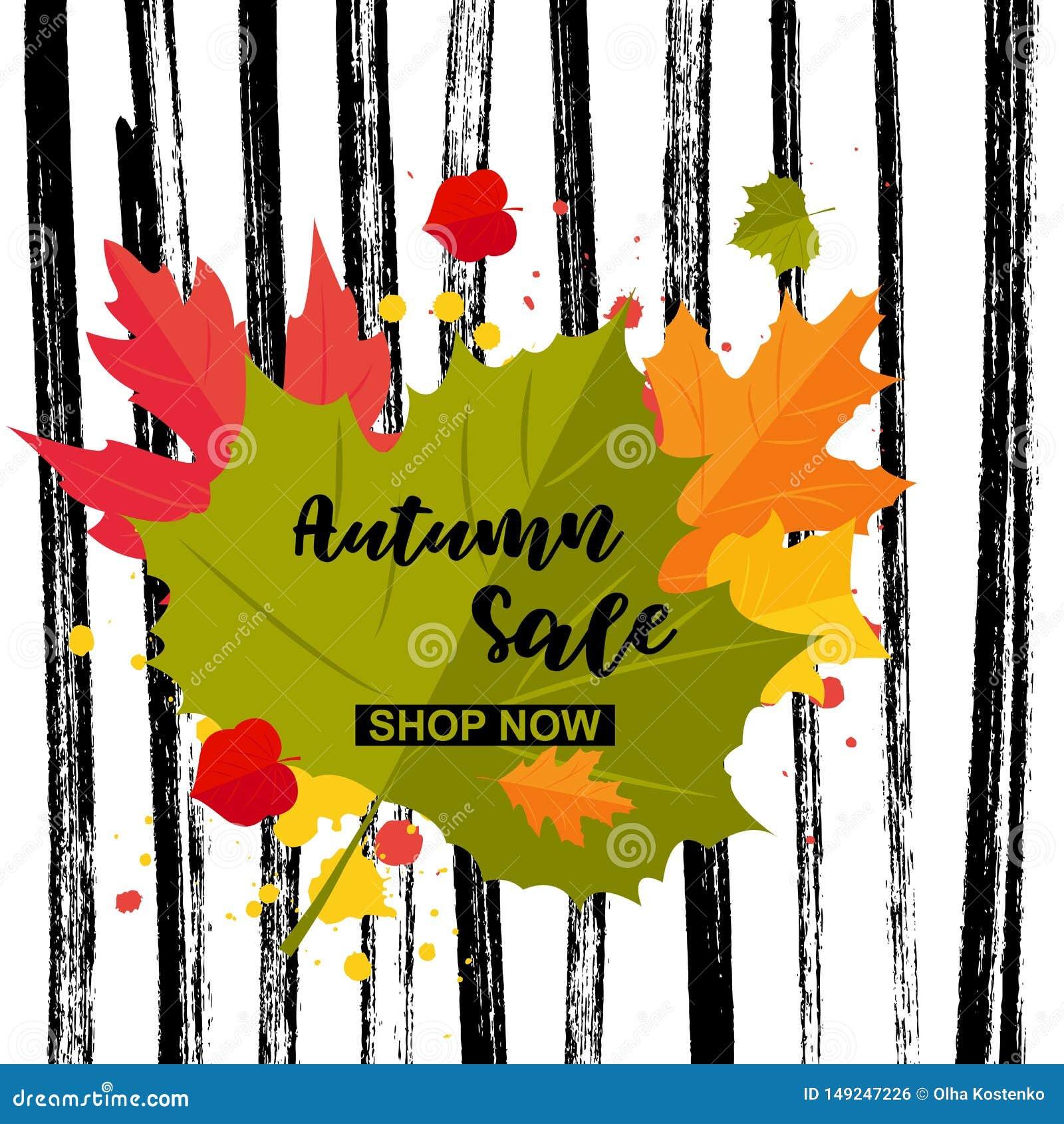 Do outono da oferta da loja palavras agora