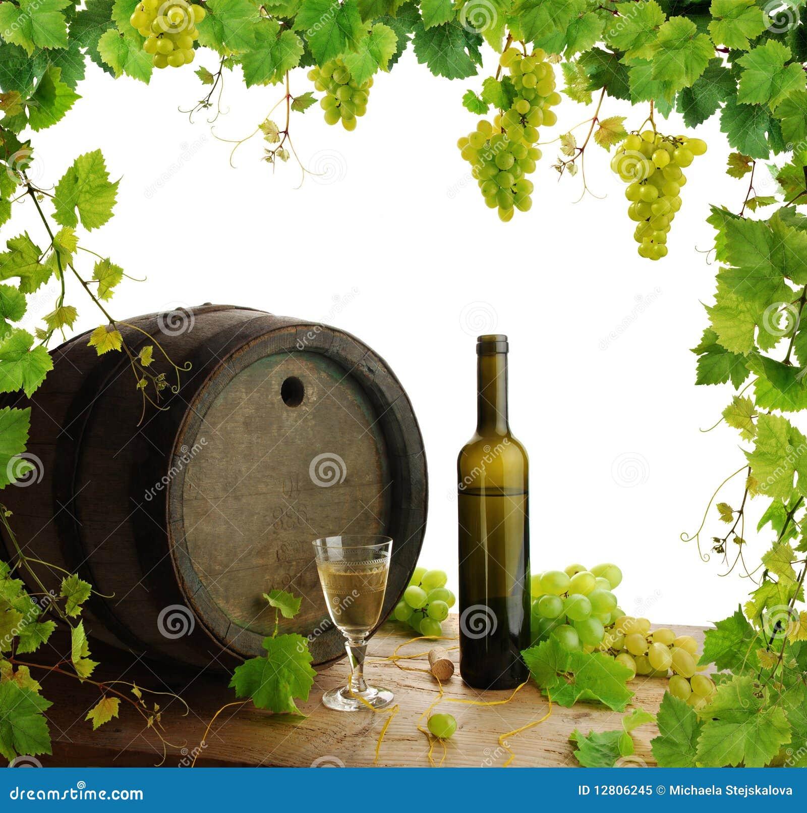 Do vinho beira da videira da vida ainda