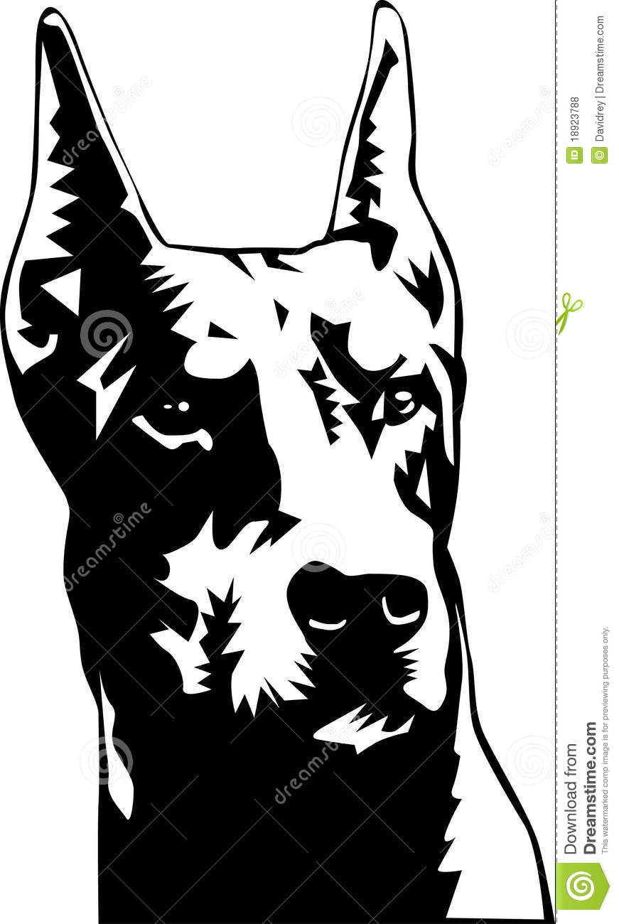 Black and white illustration of a head of a doberman