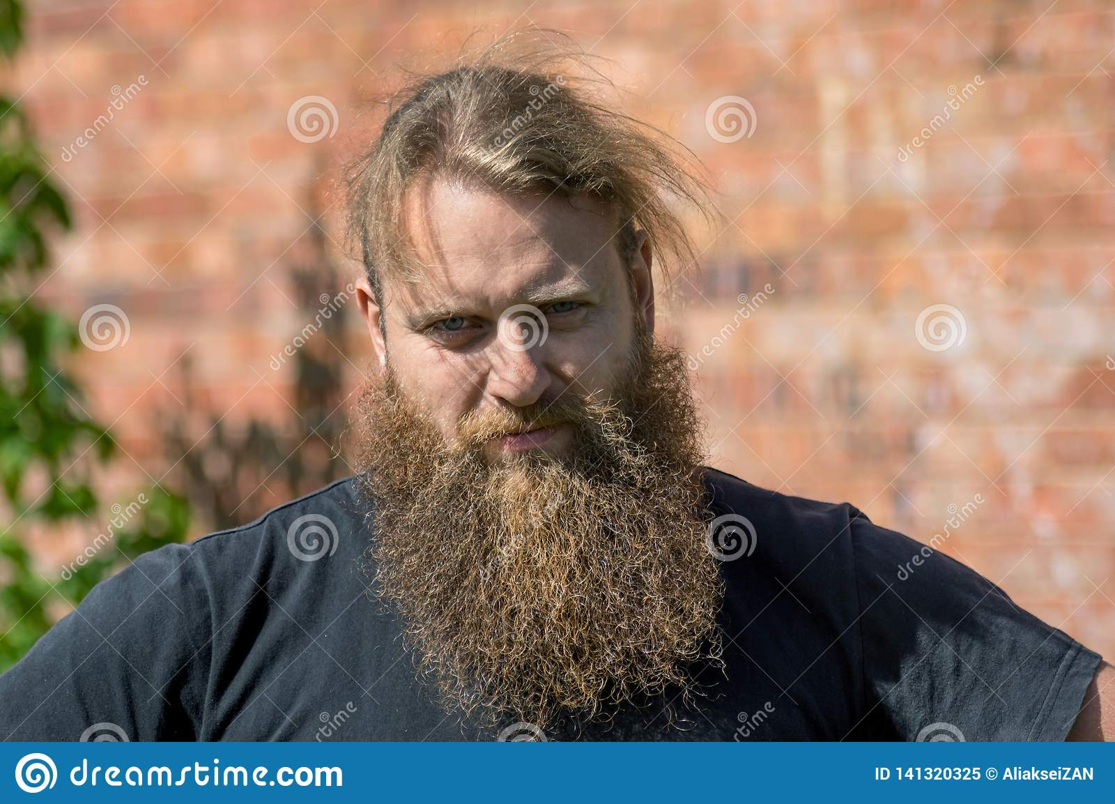 Dobrotliwy portret mężczyzna z brodą