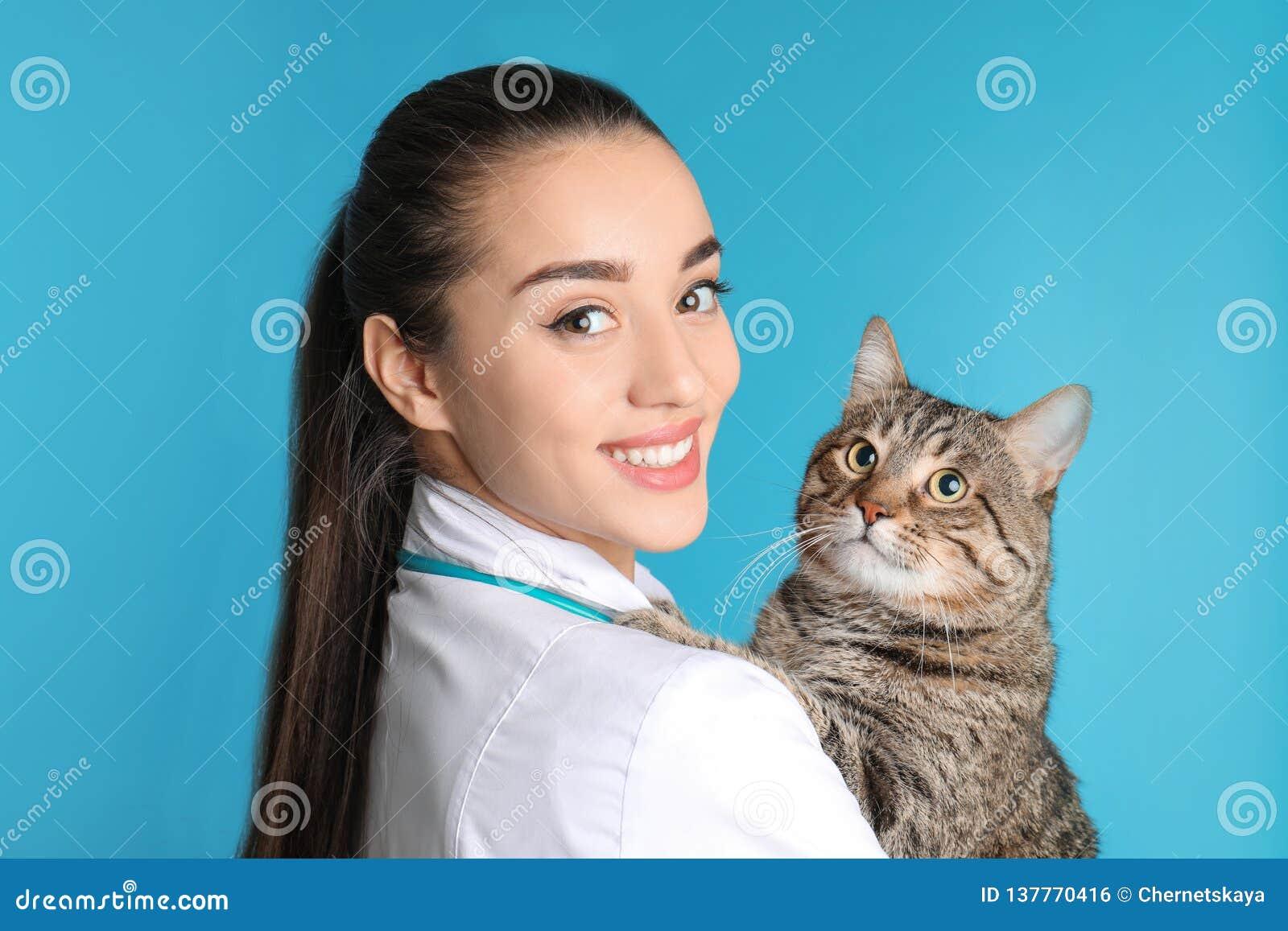 Doc. de vétérinaire avec le chat