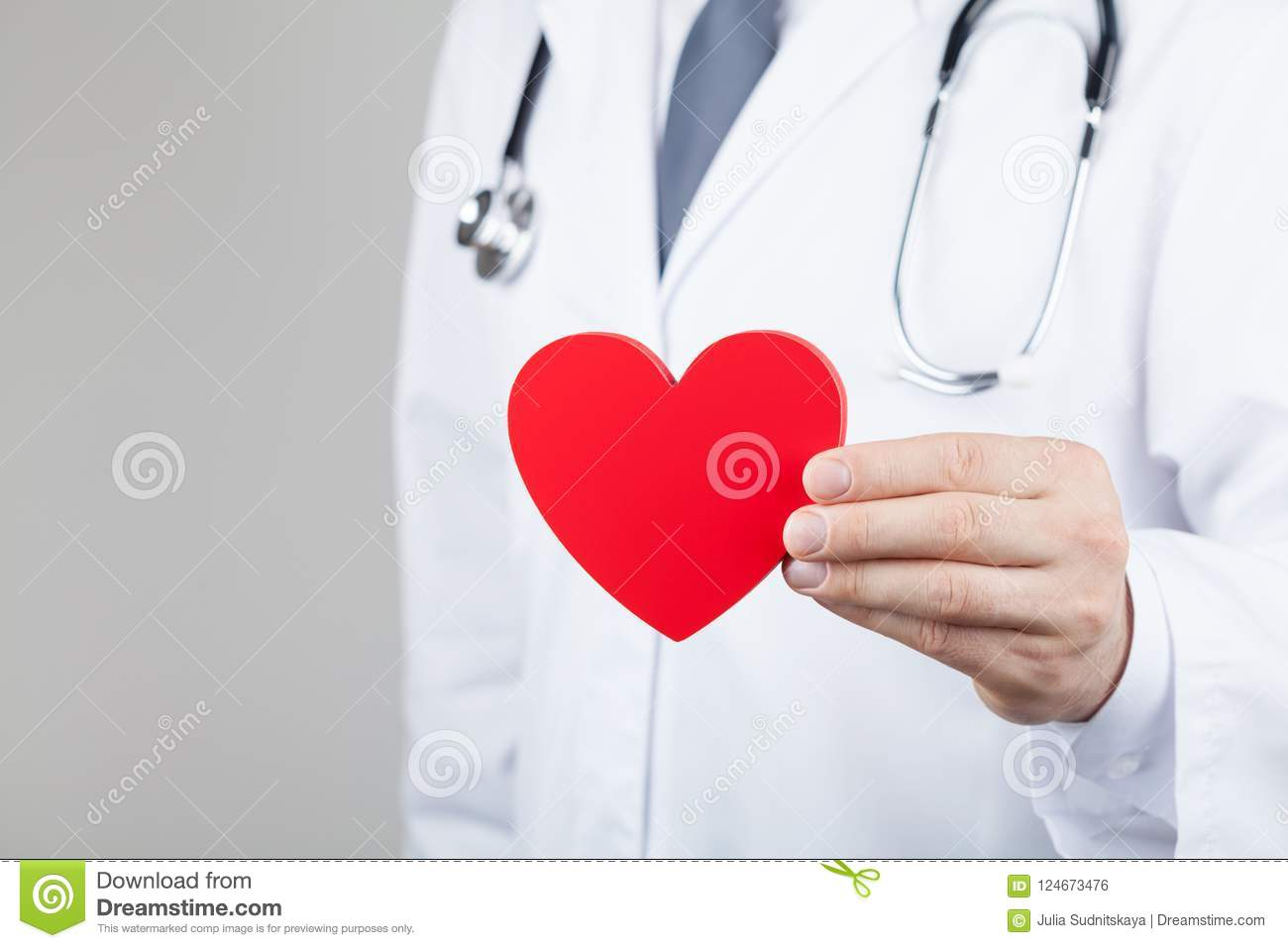 Doctor cardiologist holding a heart in his hands. Cardiology and heart disease concept.